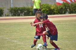 mini_soccer (675)