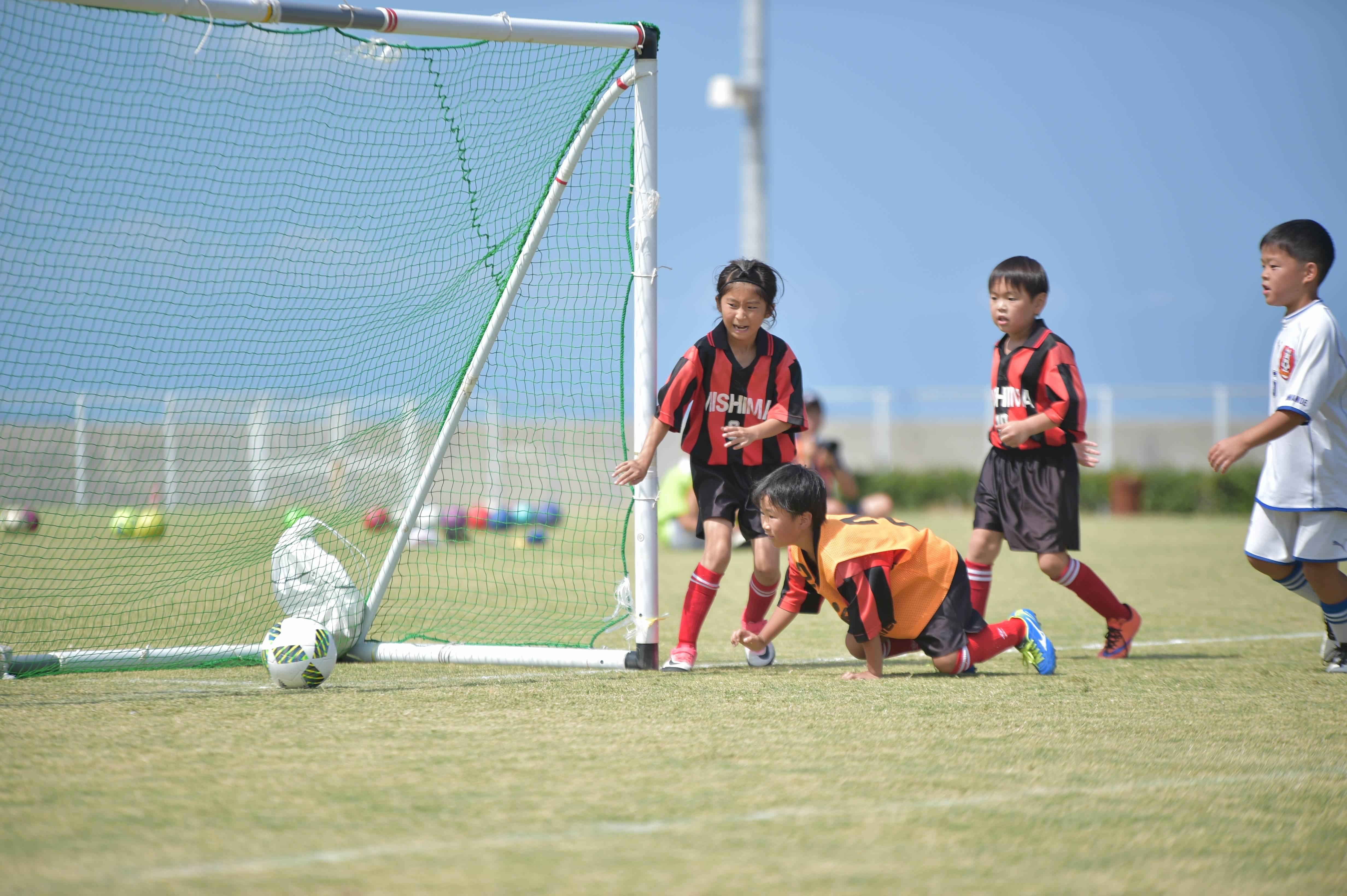 mini_soccer (323)
