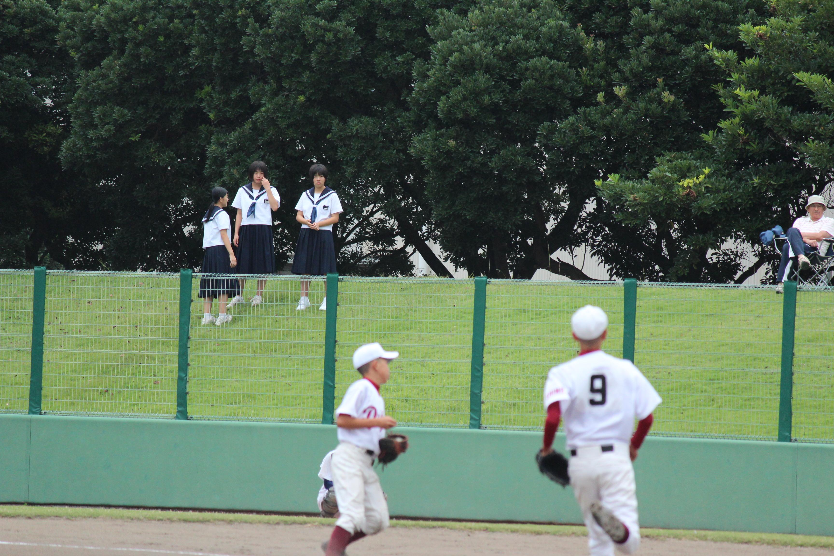 野球 (230)