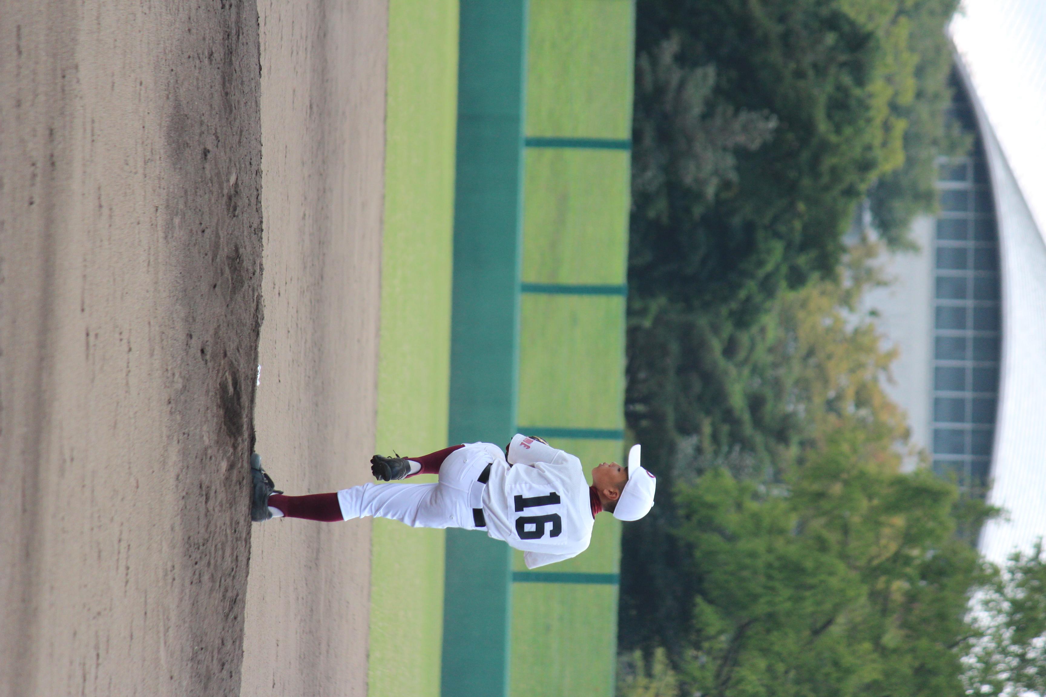 野球 (882)
