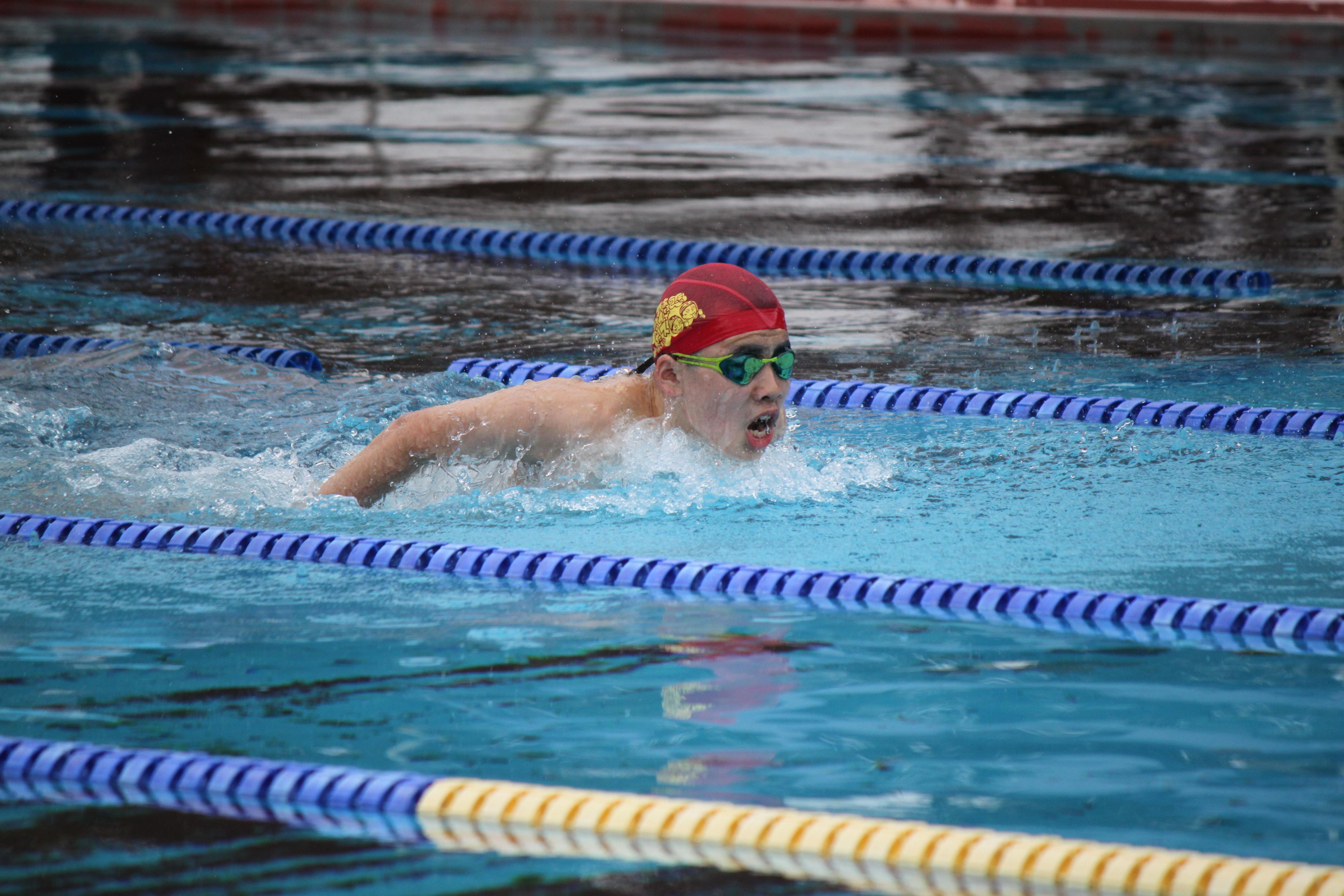 水泳競技 (19)