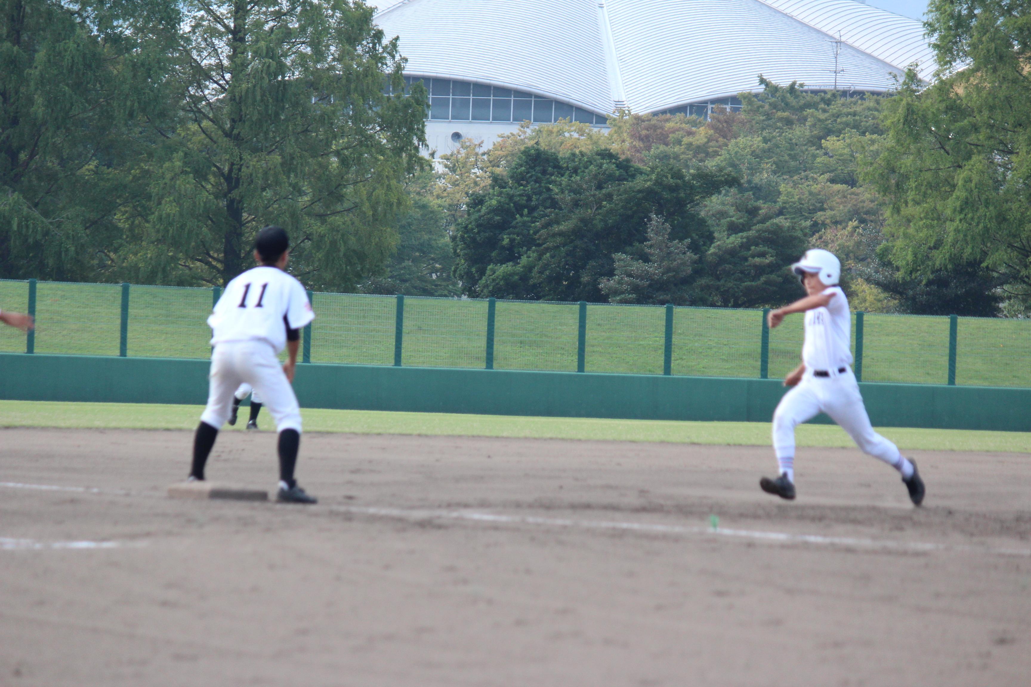 野球 (391)