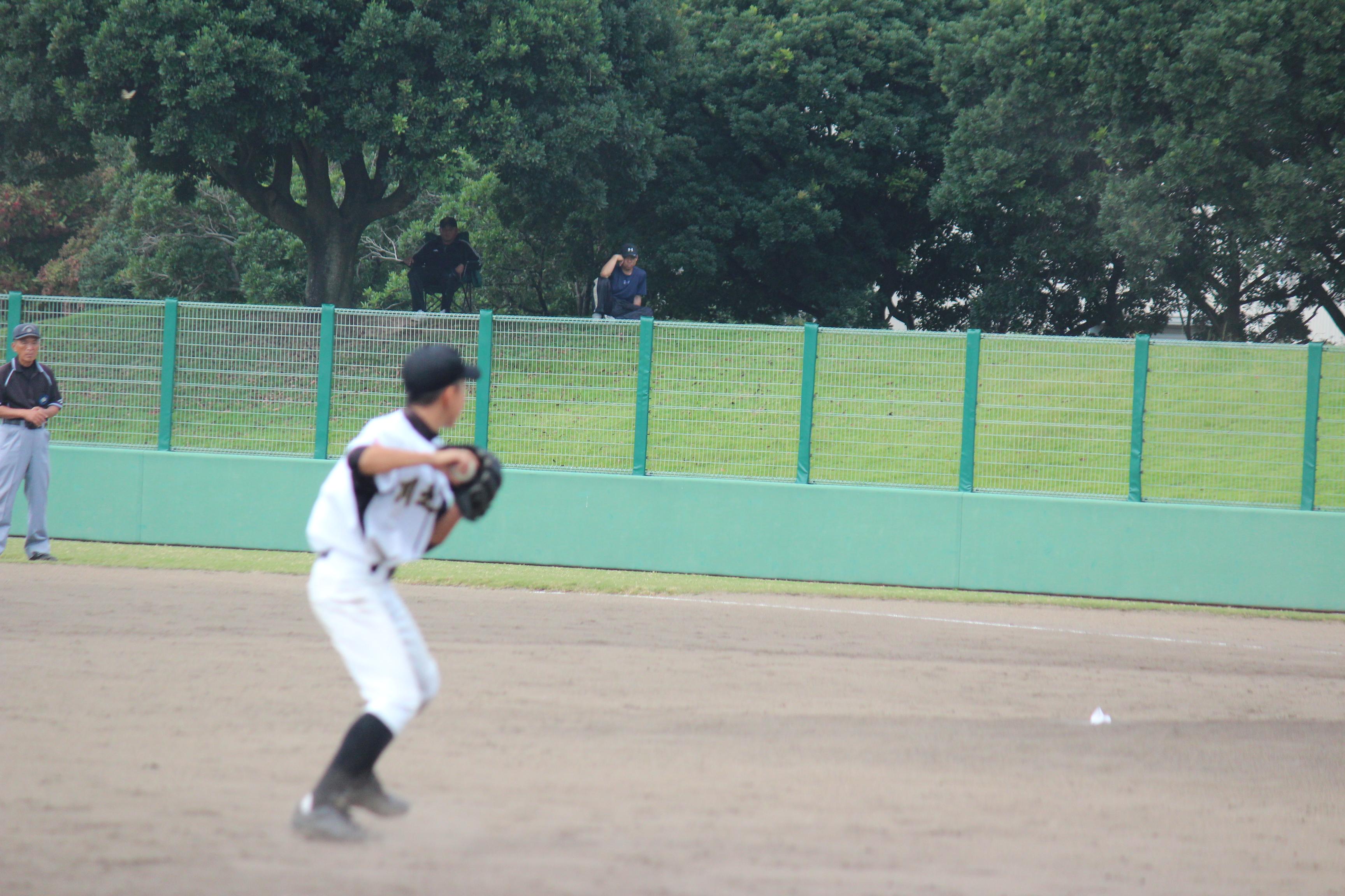 野球 (495)