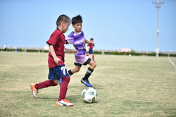 mini_soccer (271)