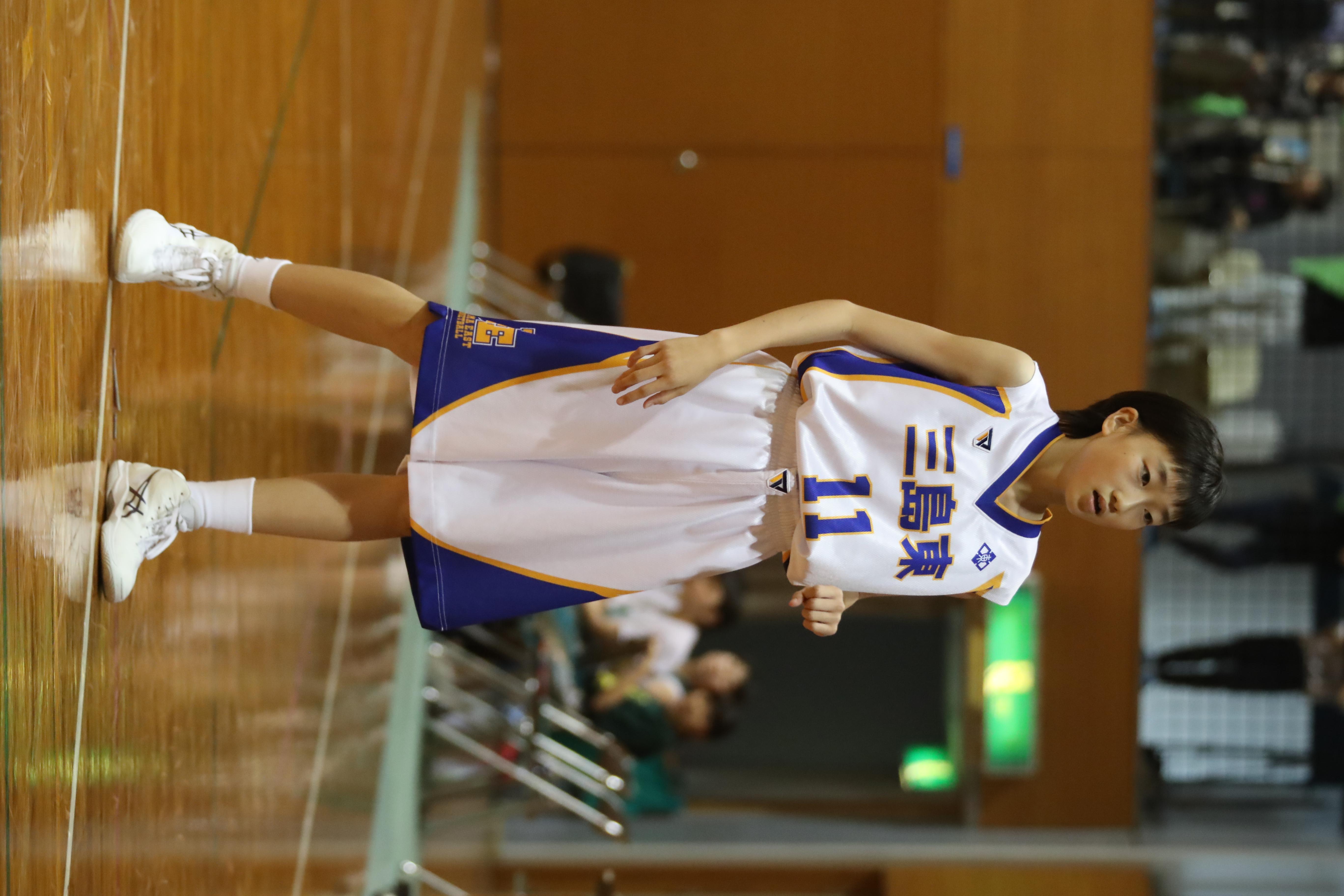 バスケット (294)