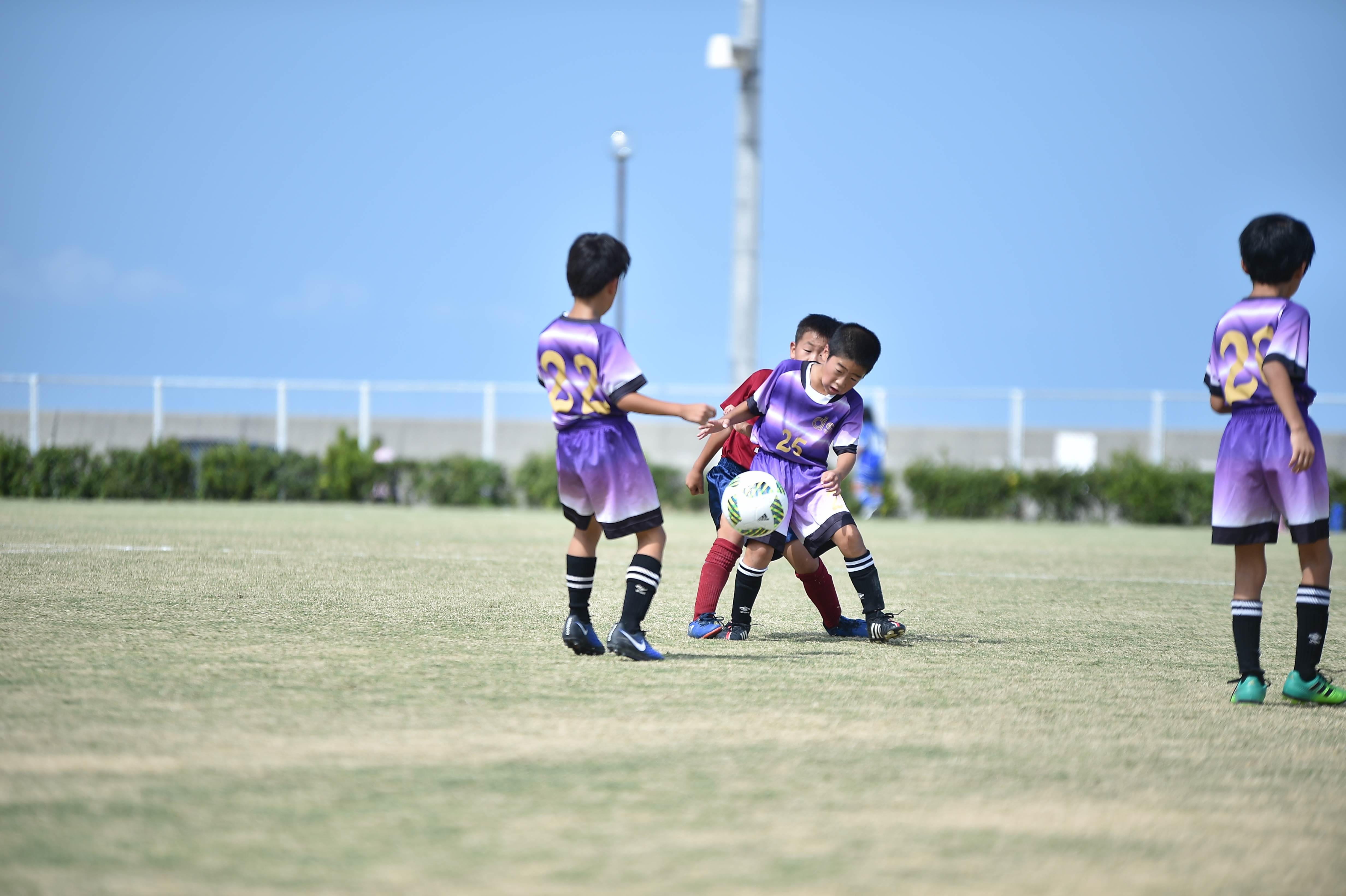 mini_soccer (274)