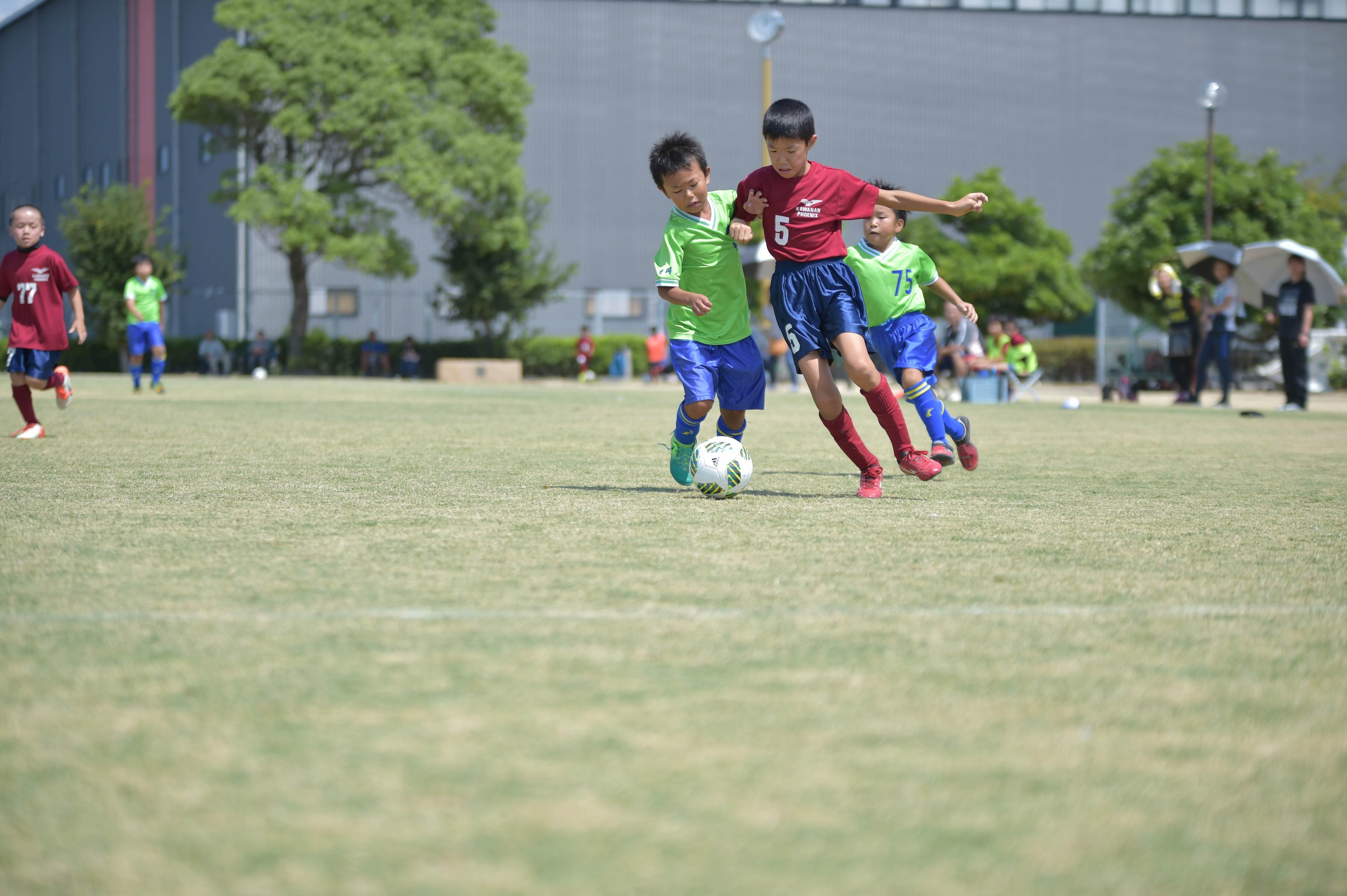 mini_soccer (431)