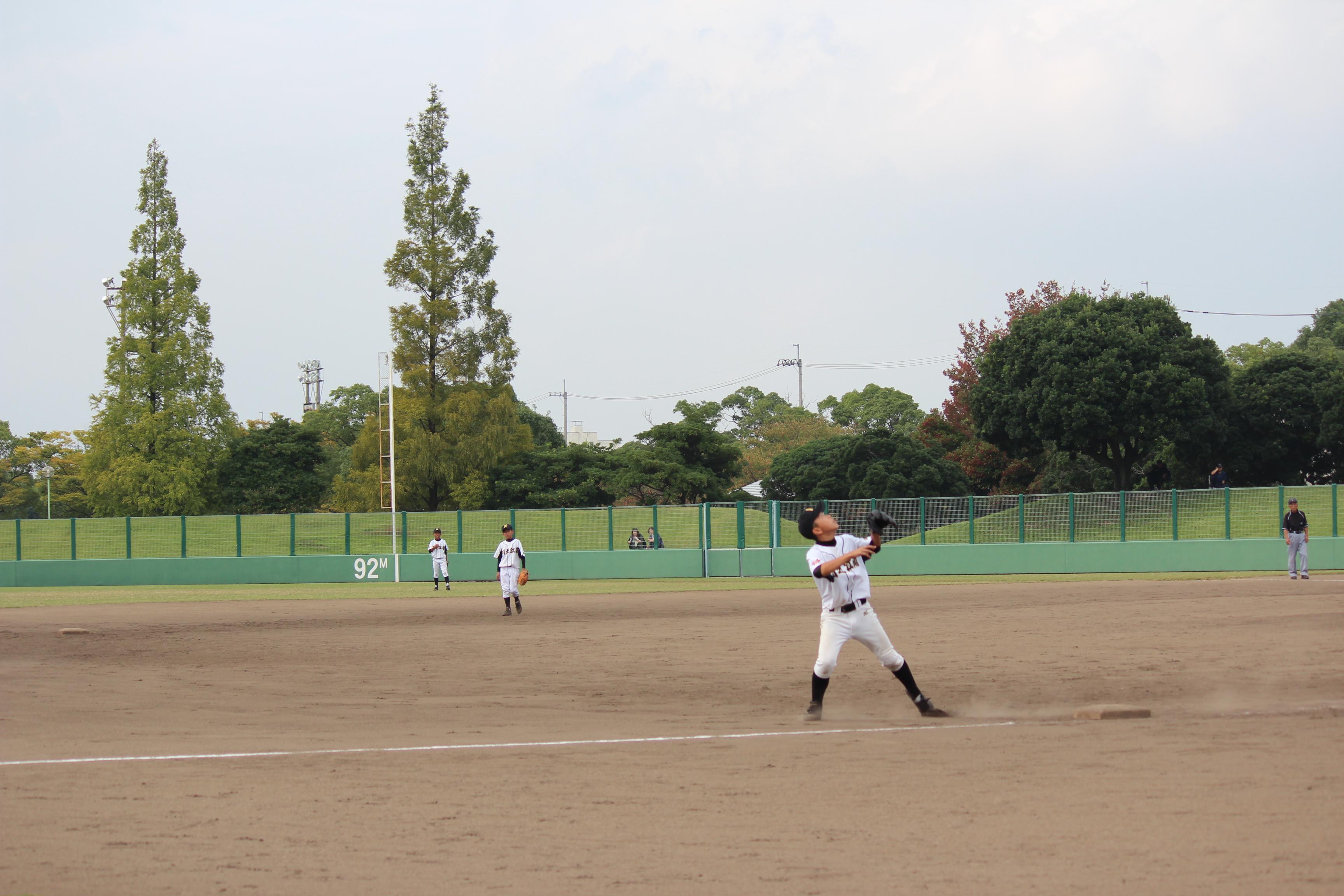 野球 (497)