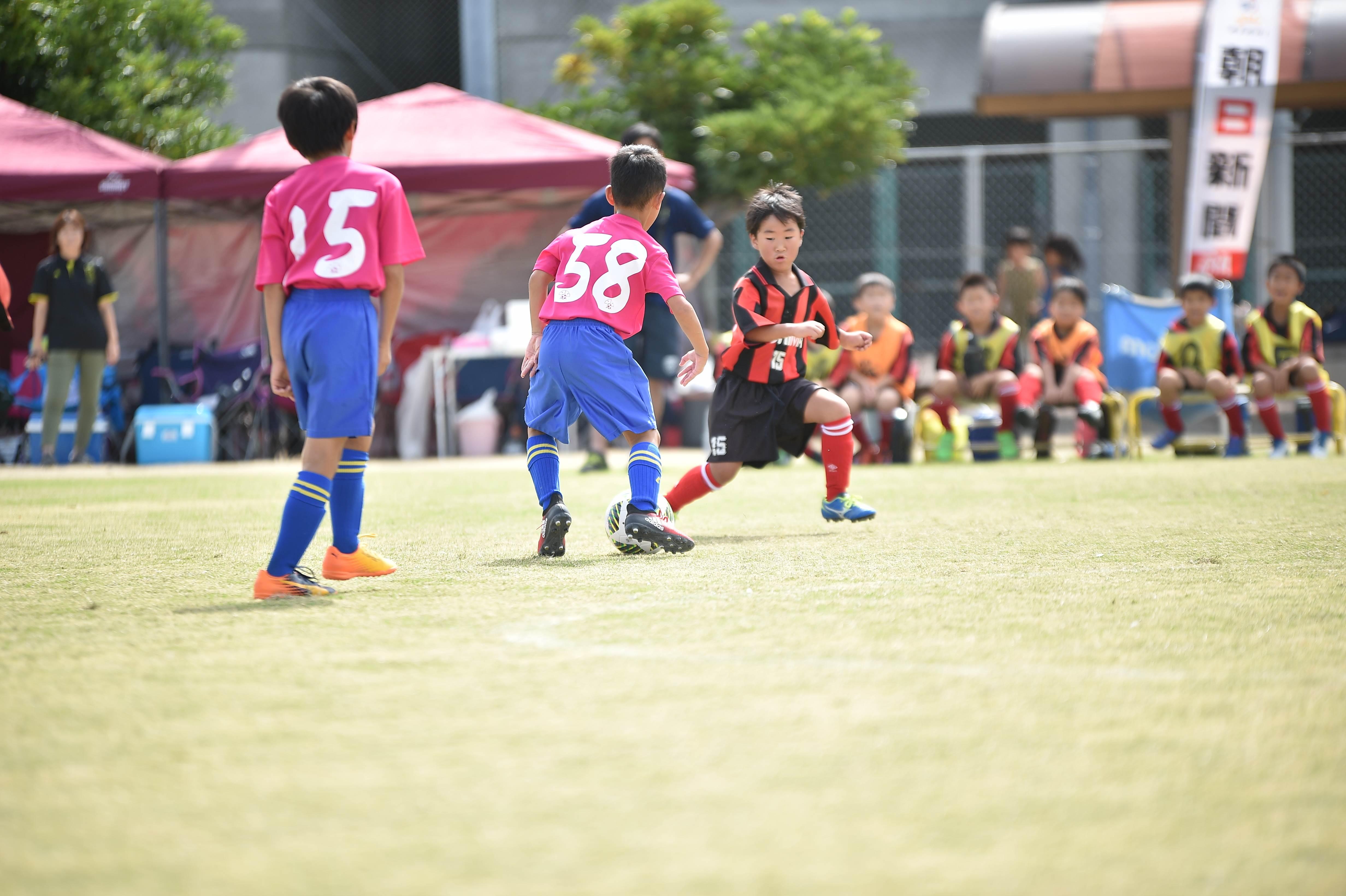 mini_soccer (204)