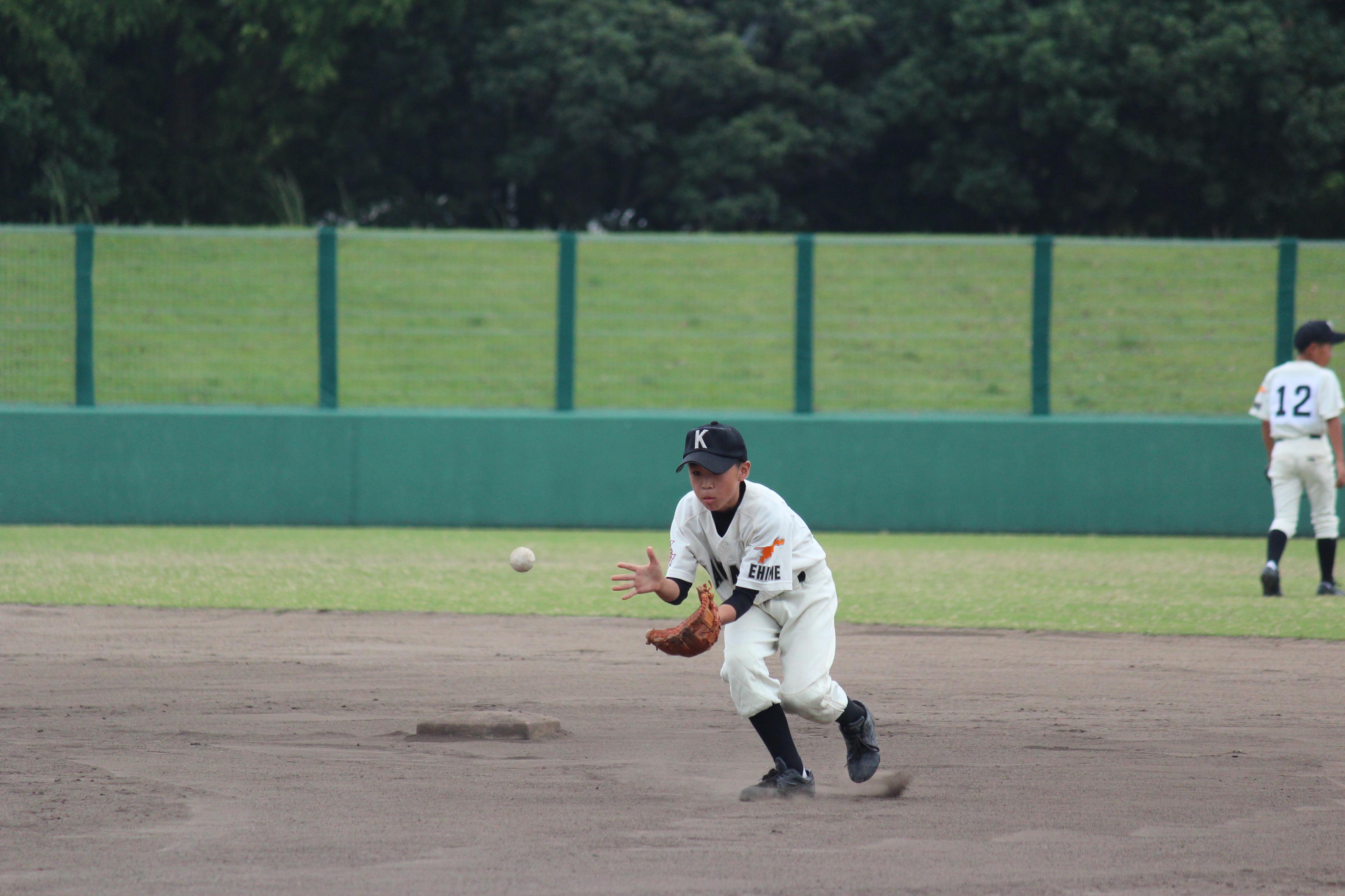 野球 (530)