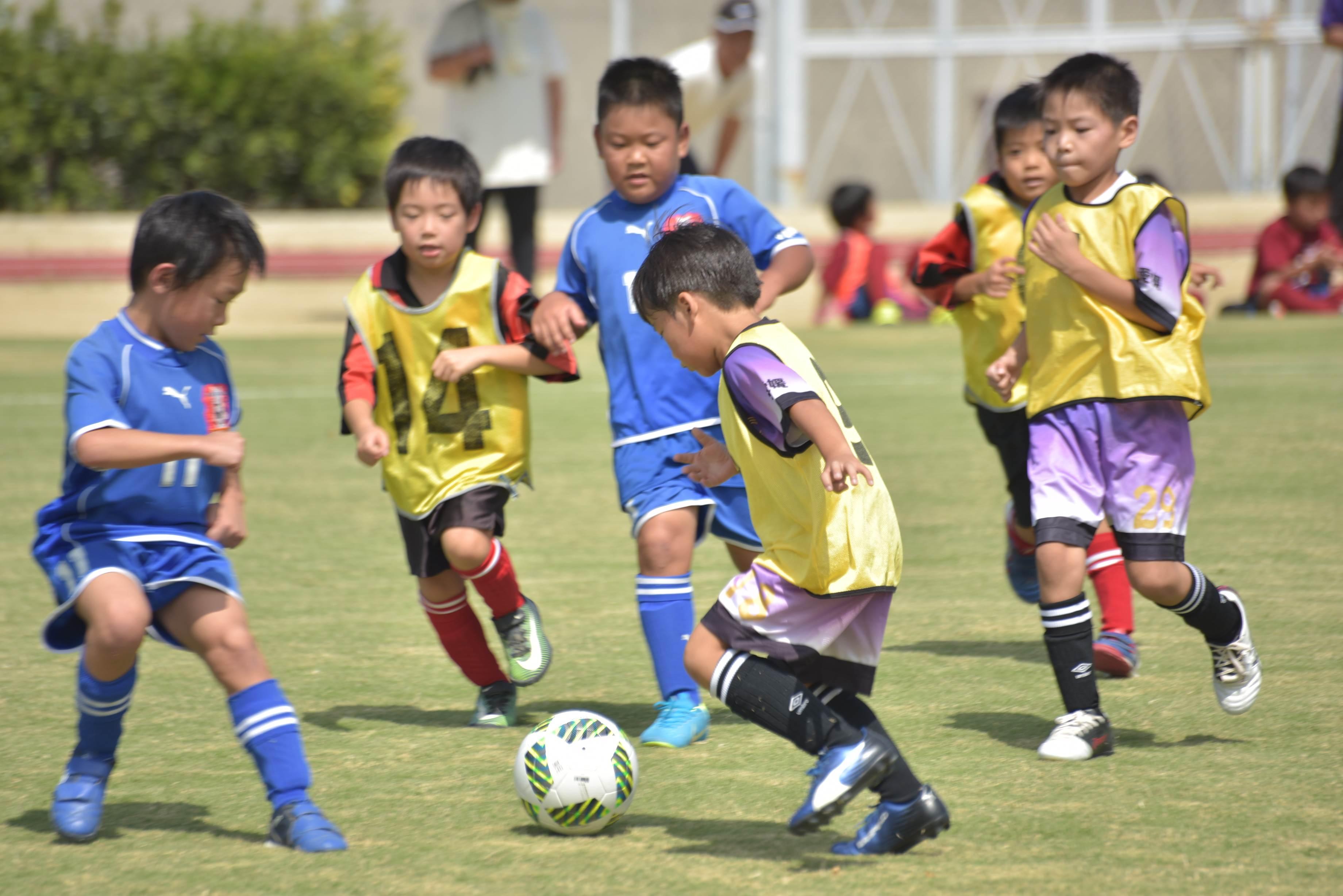 mini_soccer (609)