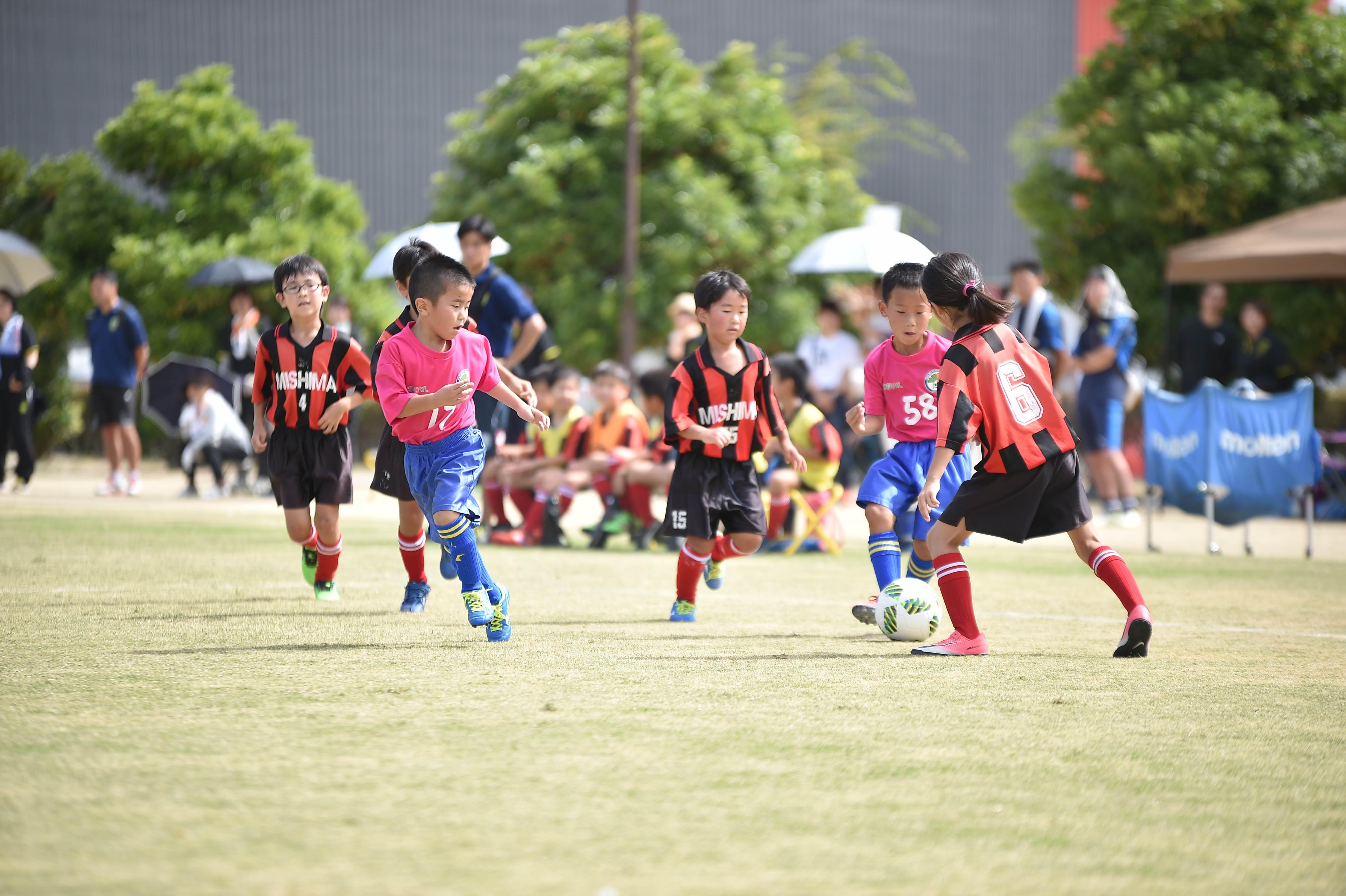 mini_soccer (215)