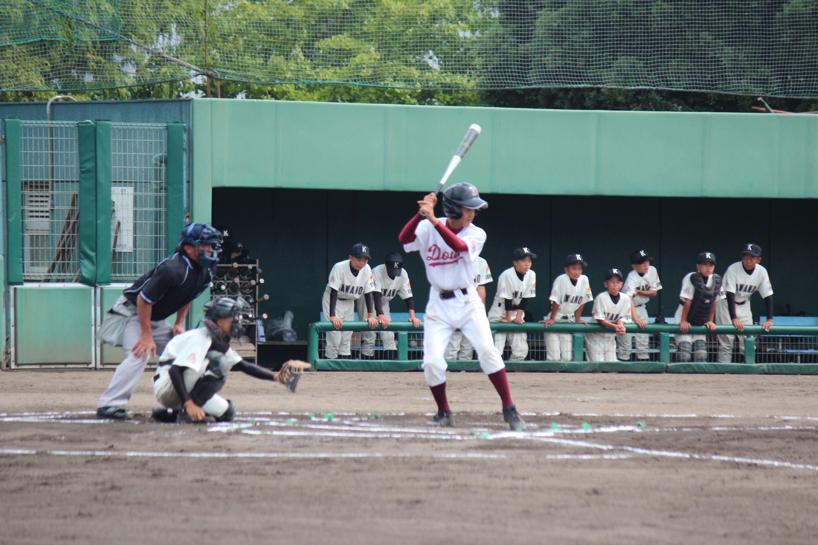 野球 (547)