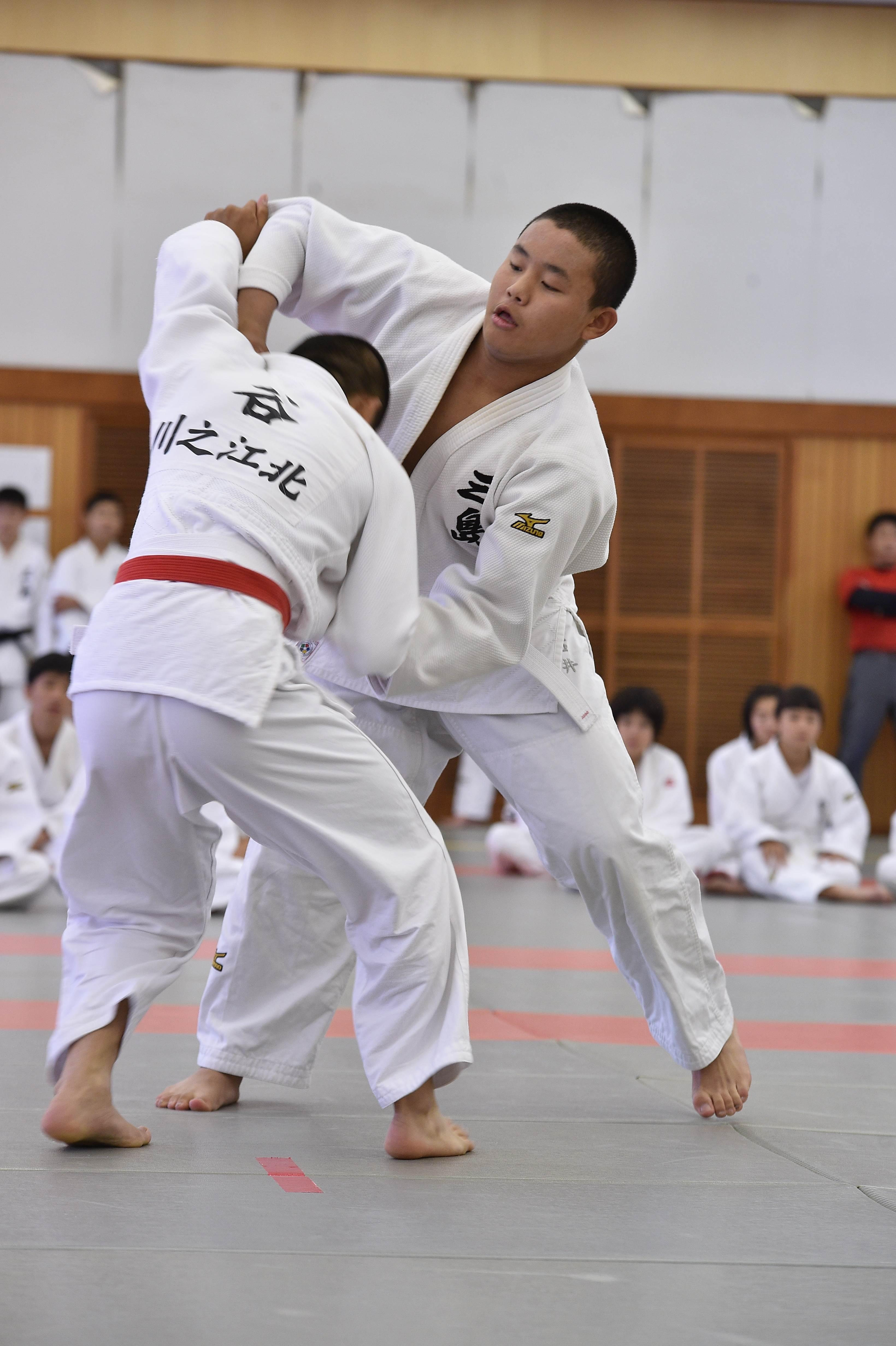 柔道 (4)