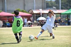 mini_soccer (506)
