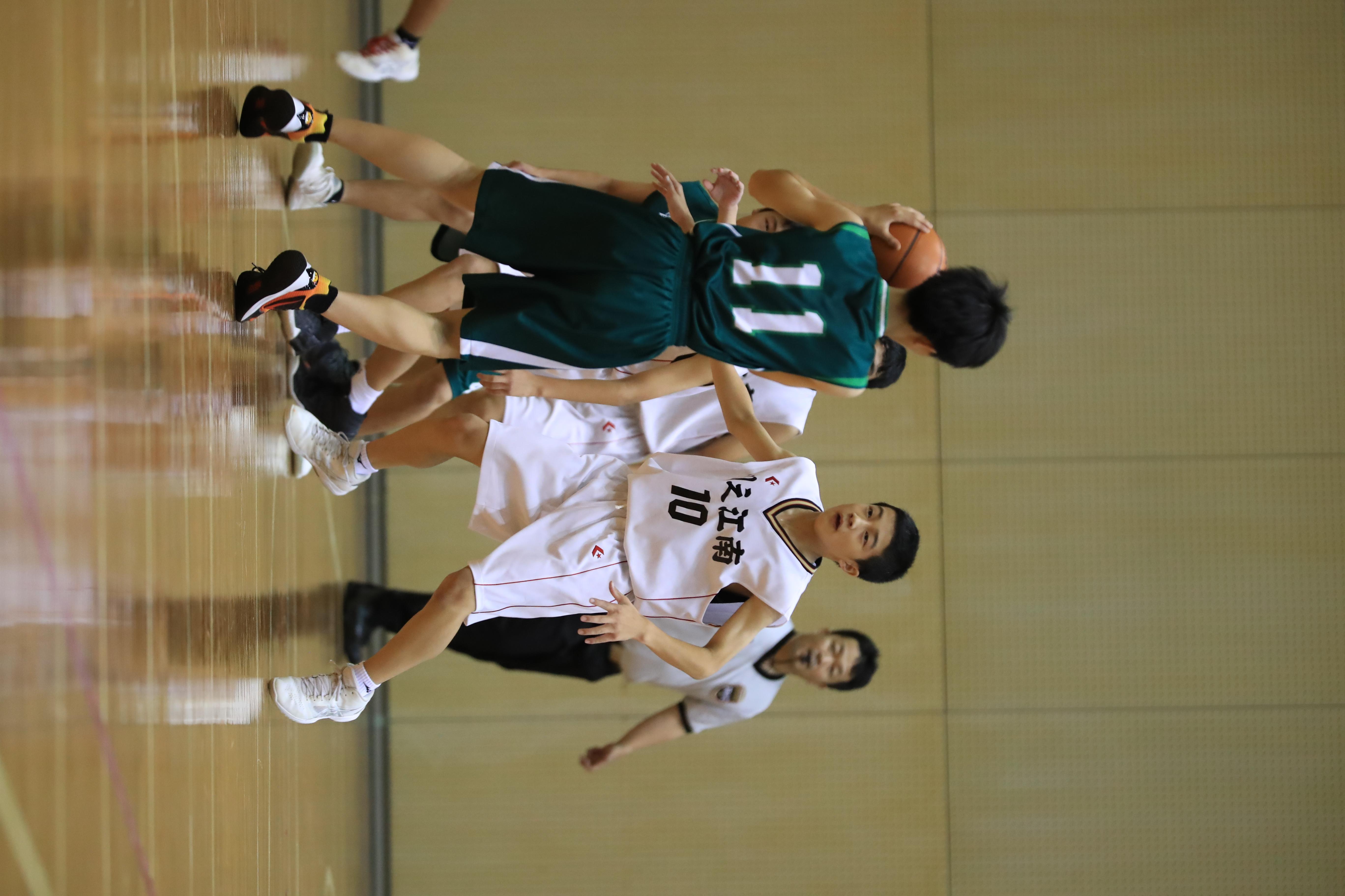 バスケット (170)