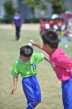 mini_soccer (441)