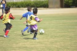 mini_soccer (610)