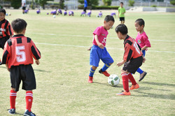 mini_soccer (155)