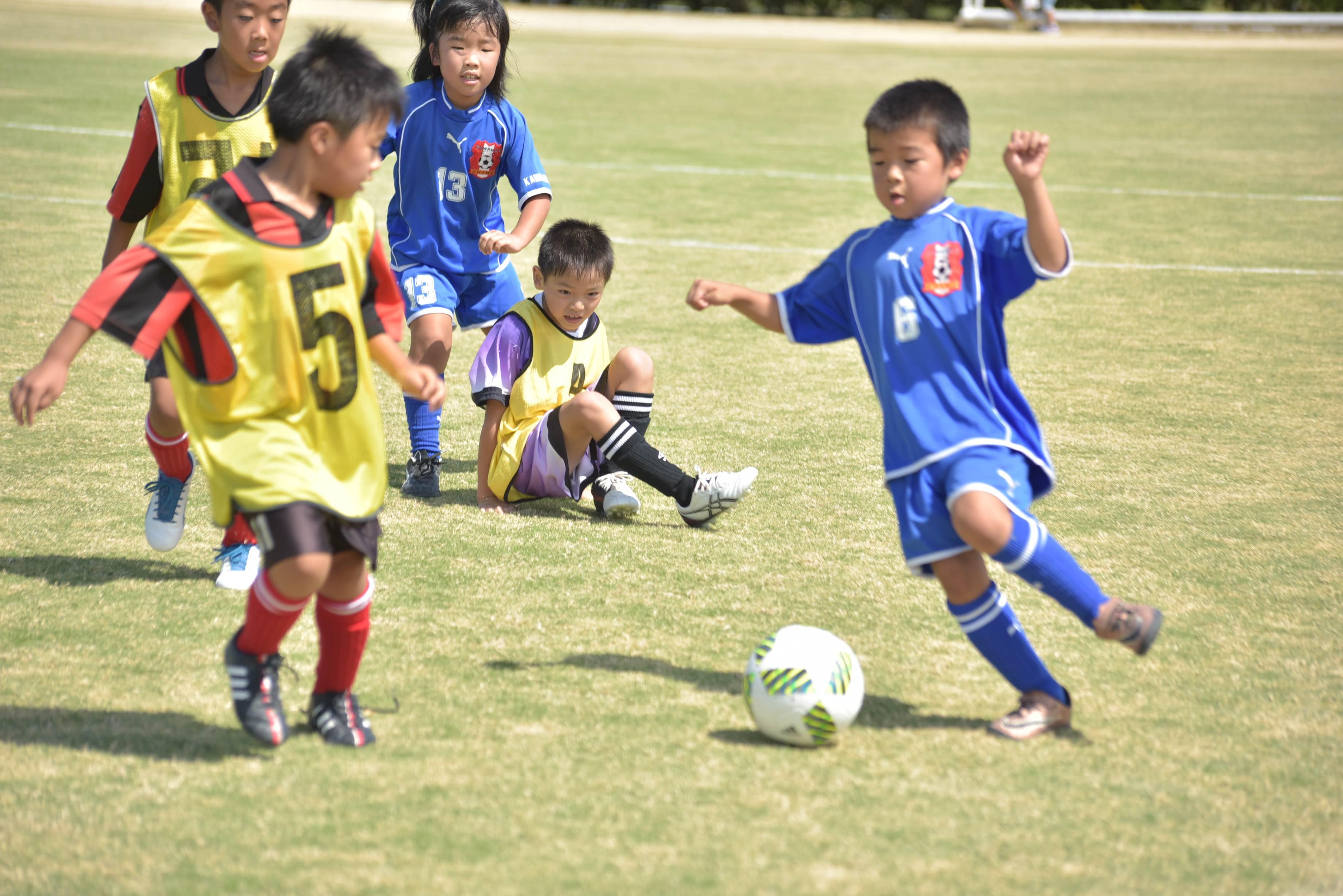 mini_soccer (645)