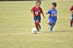 mini_soccer (567)