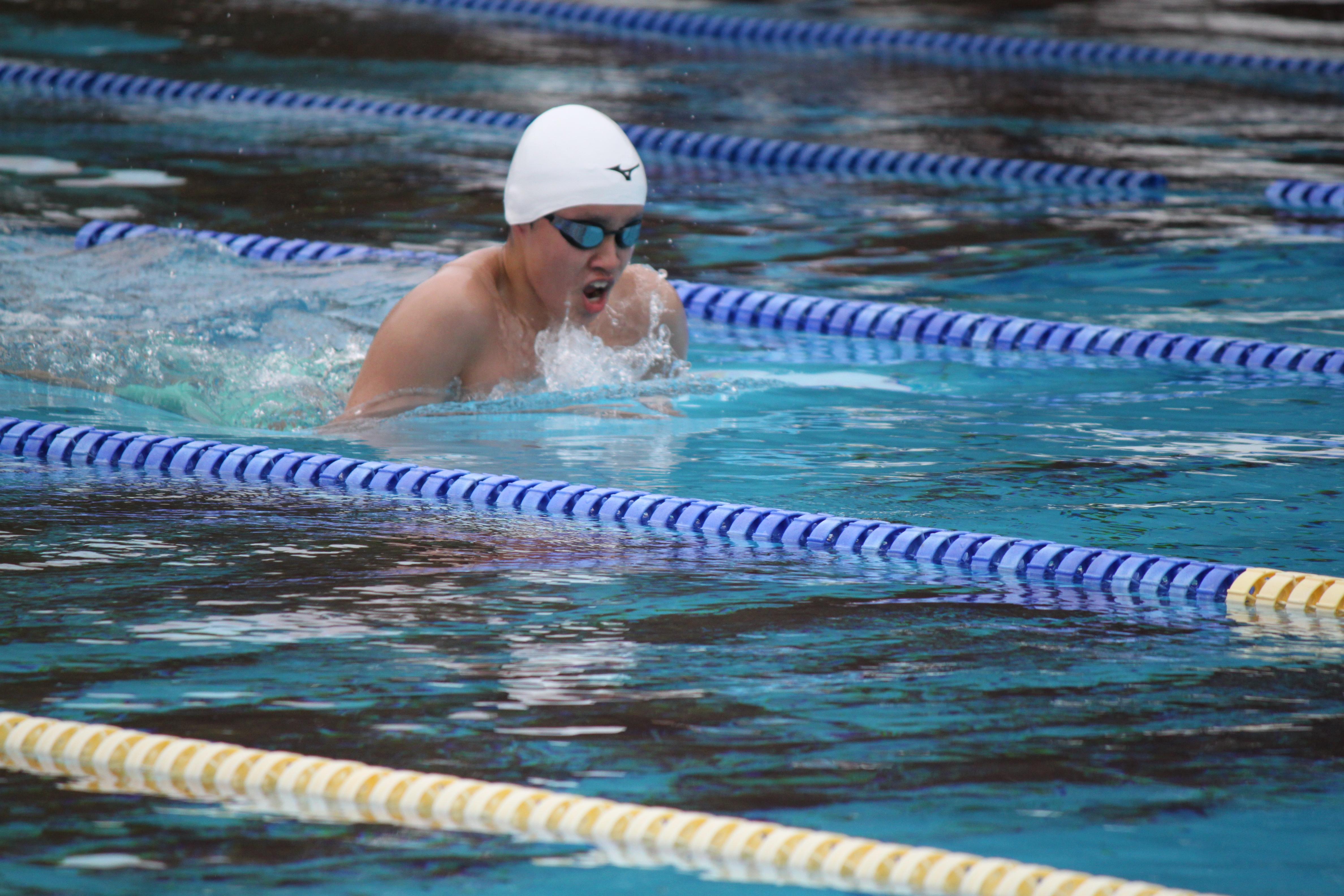 水泳競技 (35)