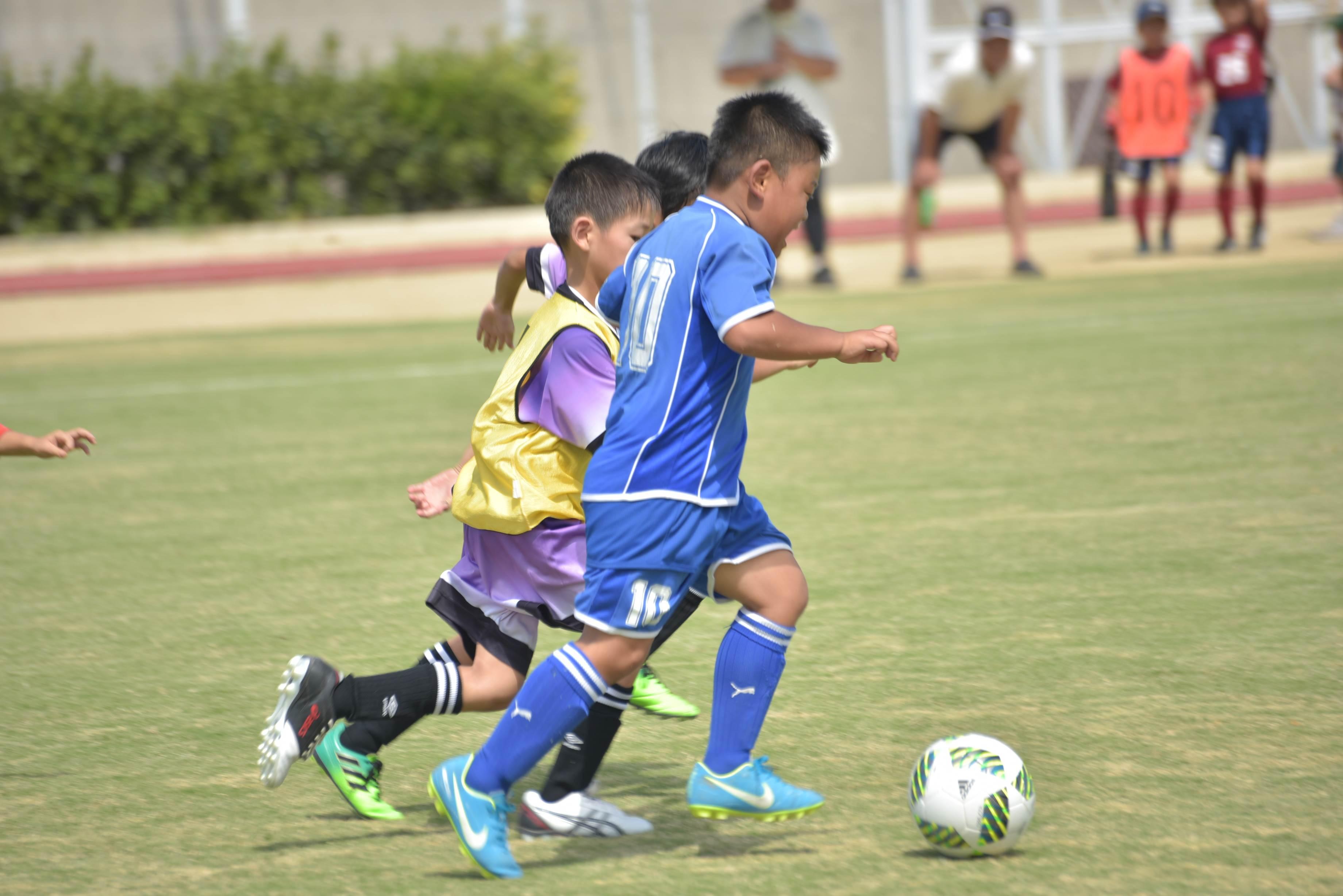 mini_soccer (599)
