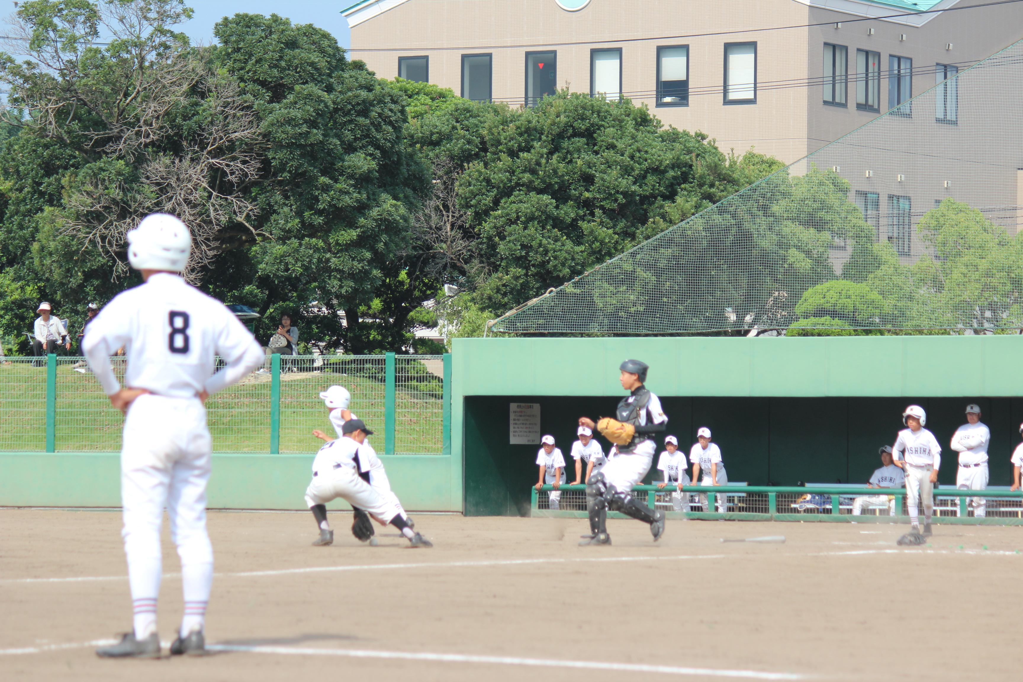 野球 (475)