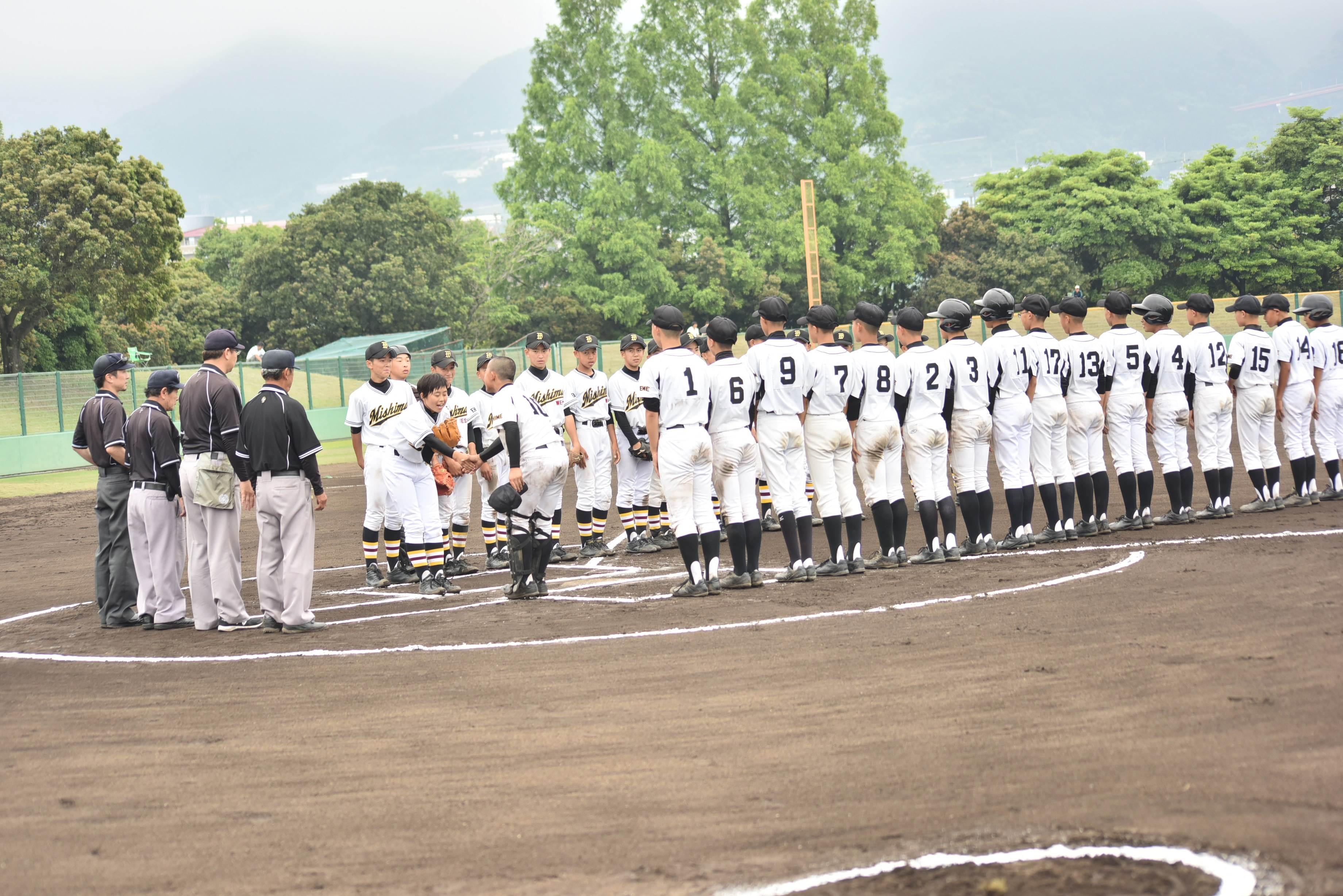 野球 (113)