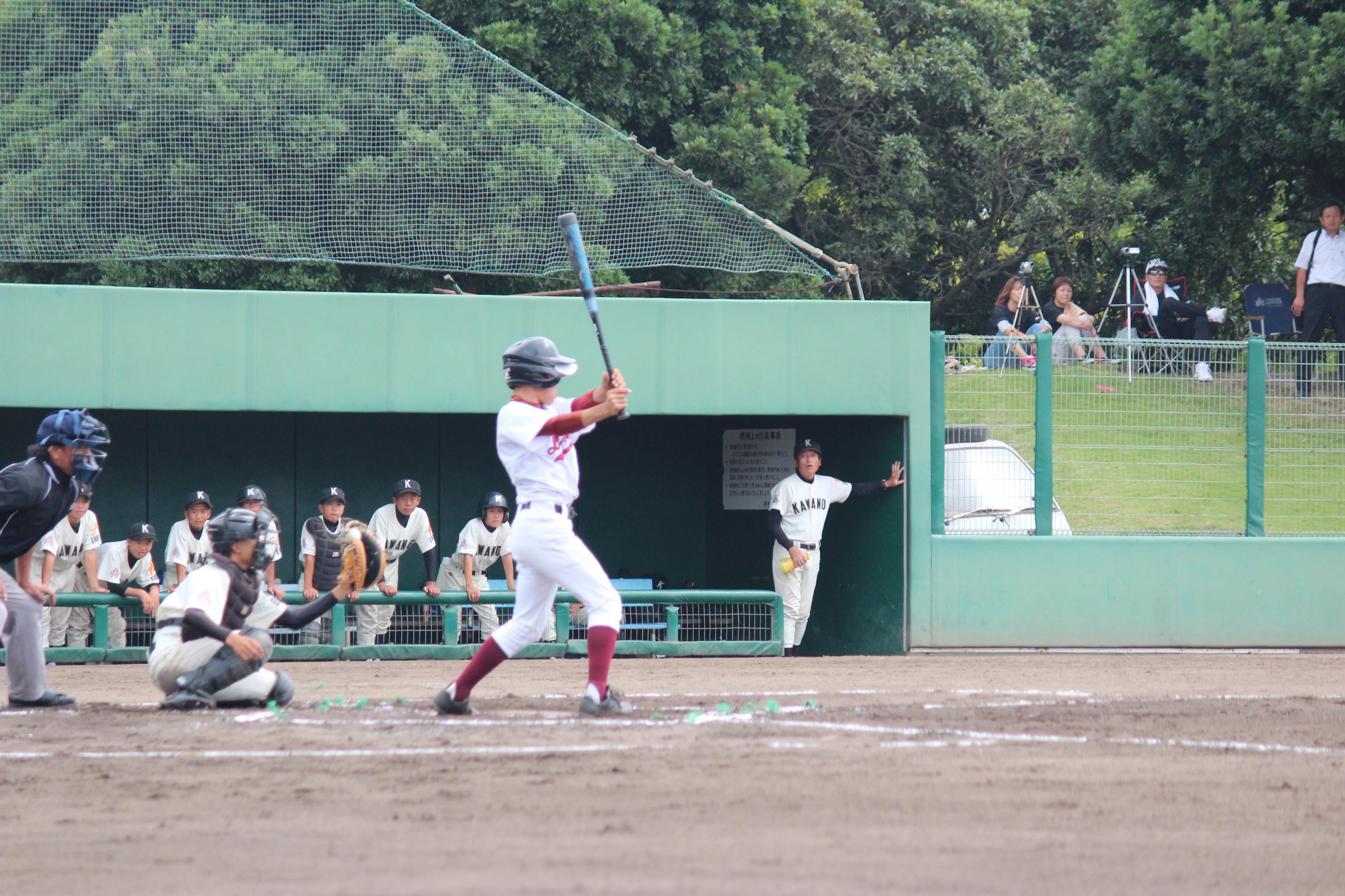 野球 (584)