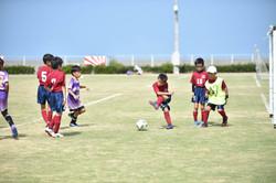 mini_soccer (260)
