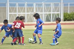 mini_soccer (578)