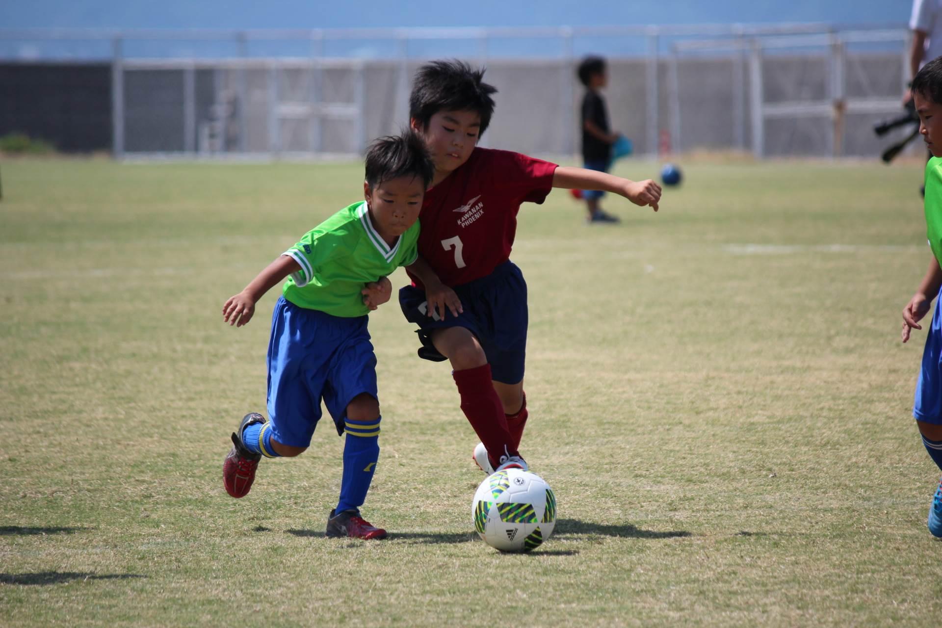 mini_soccer (131)