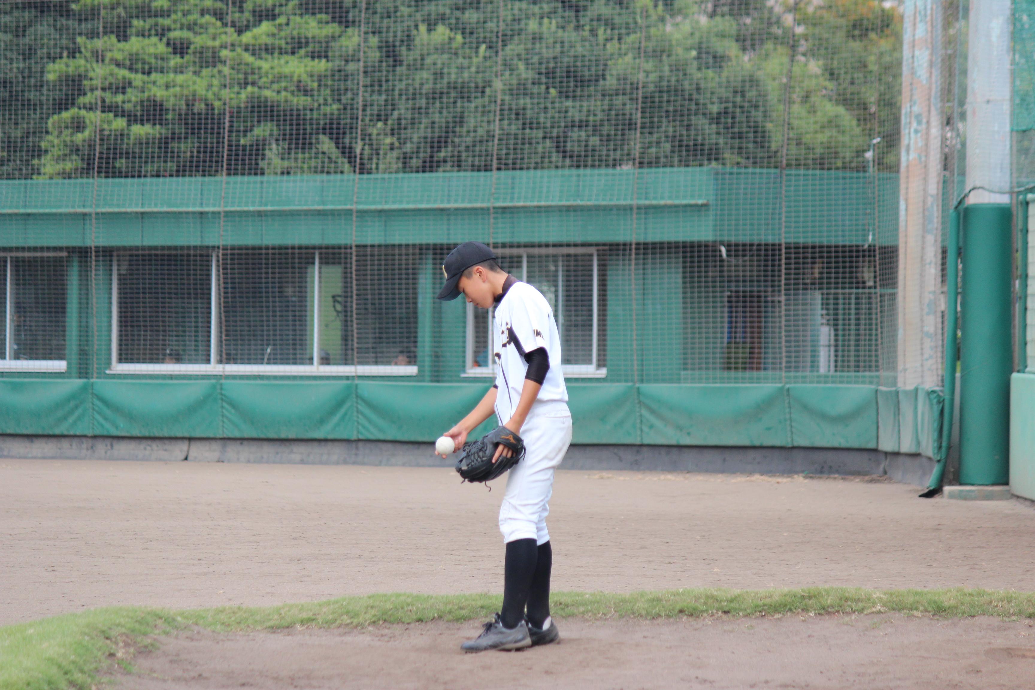 野球 (477)