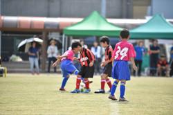 mini_soccer (190)