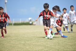 mini_soccer (309)