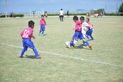 mini_soccer (391)