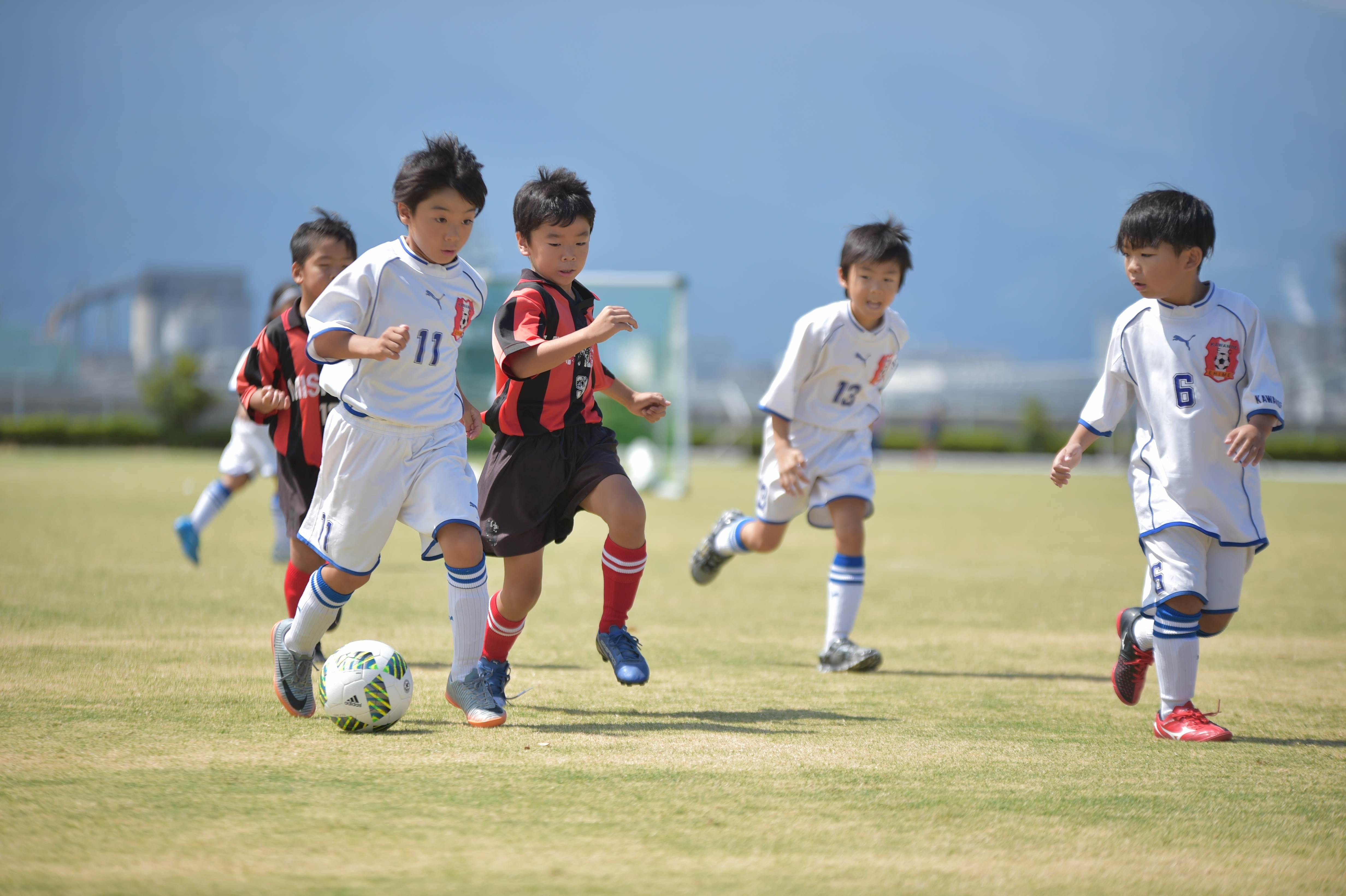 mini_soccer (377)
