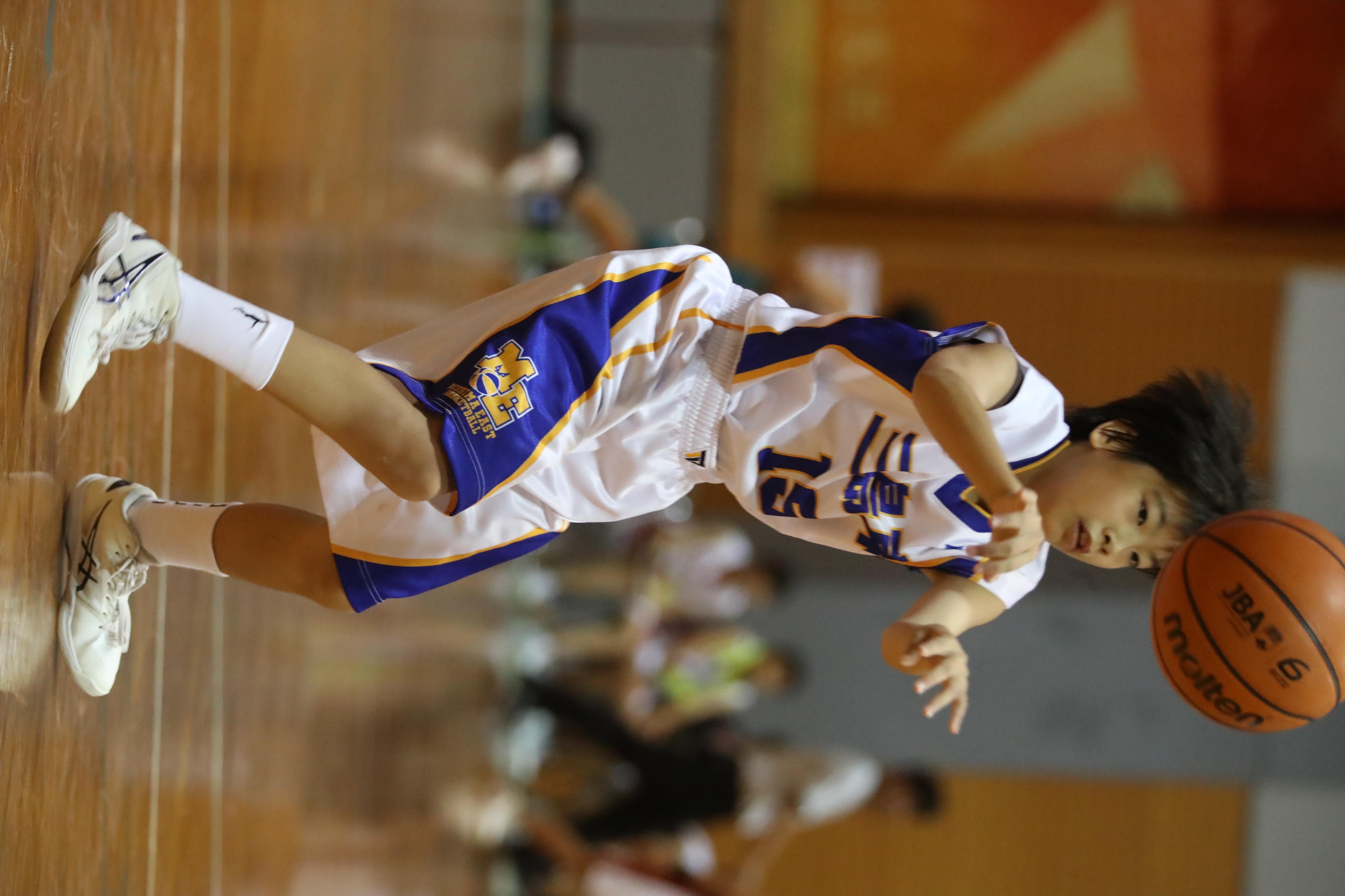 バスケット (205)
