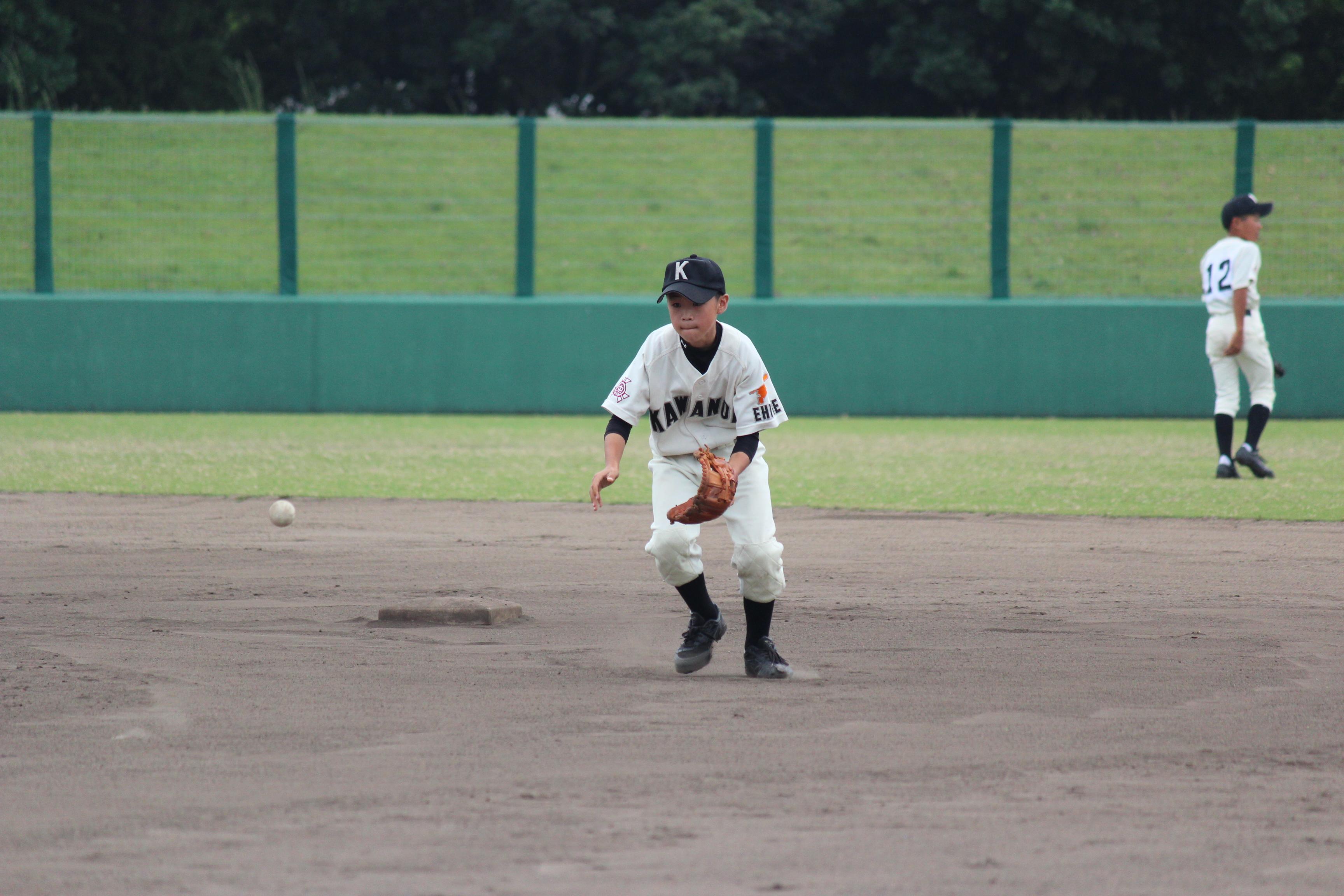 野球 (529)
