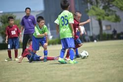 mini_soccer (424)