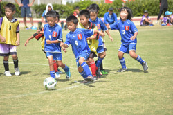 mini_soccer (625)