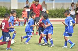 mini_soccer (575)