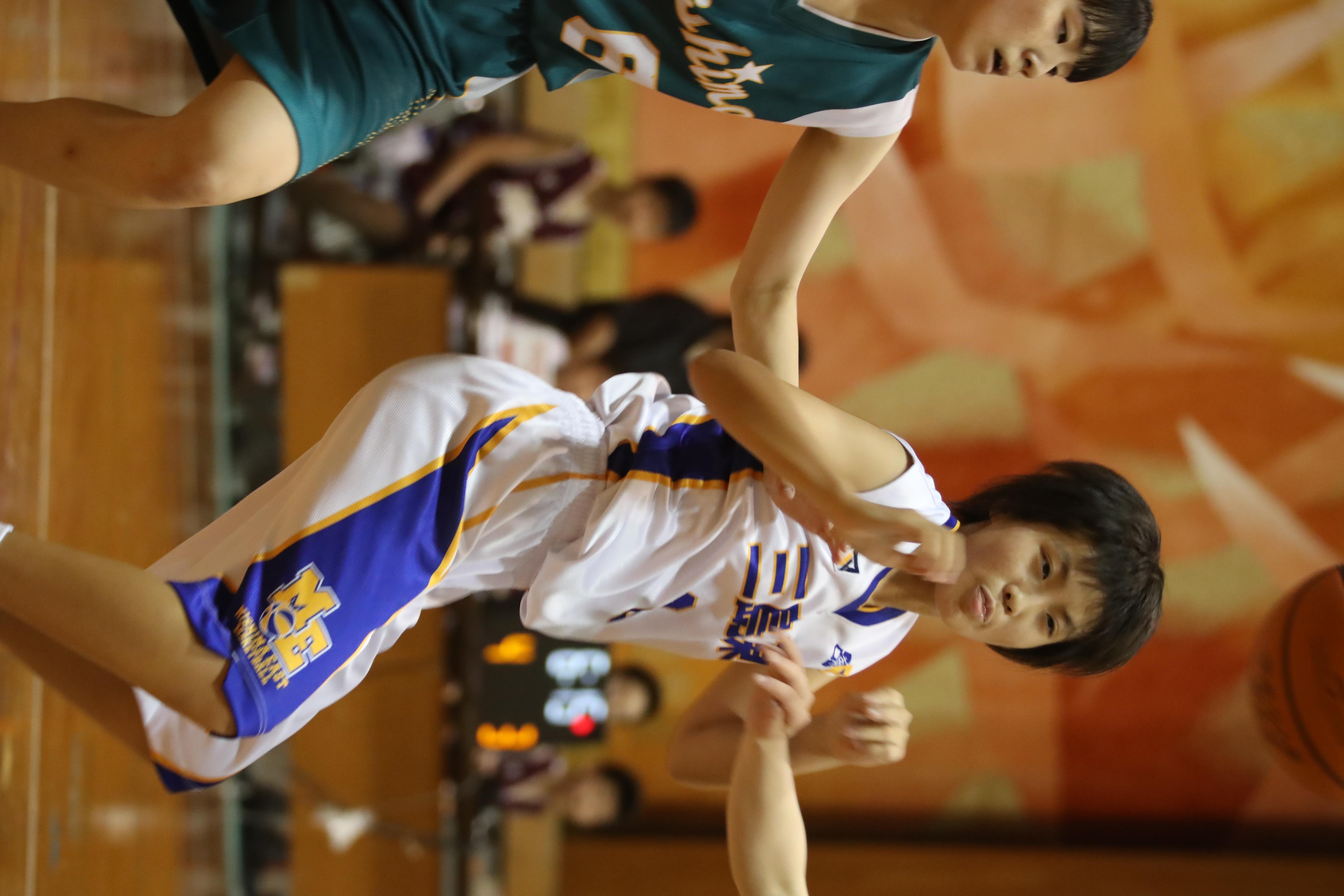 バスケット (247)