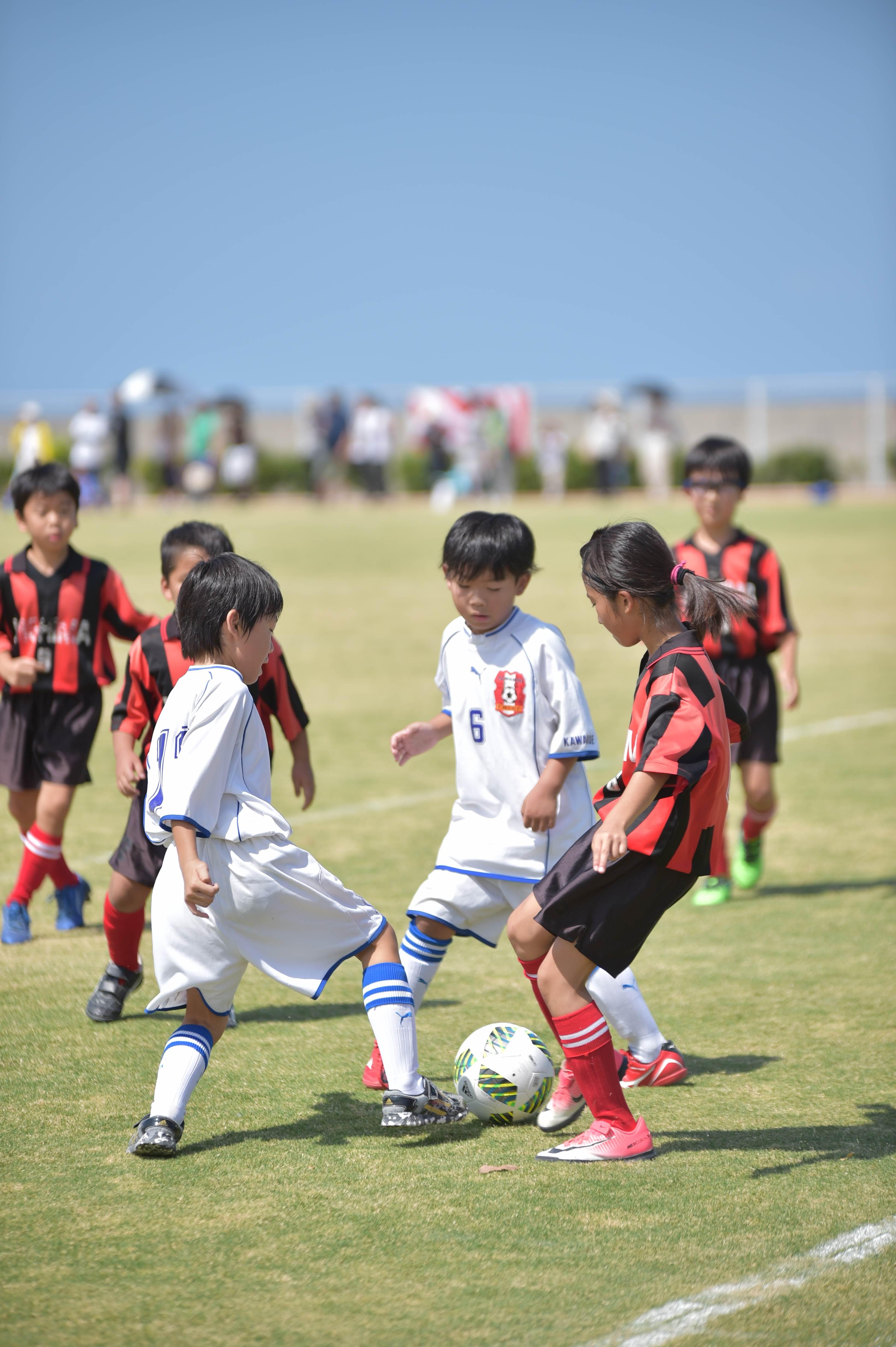 mini_soccer (390)