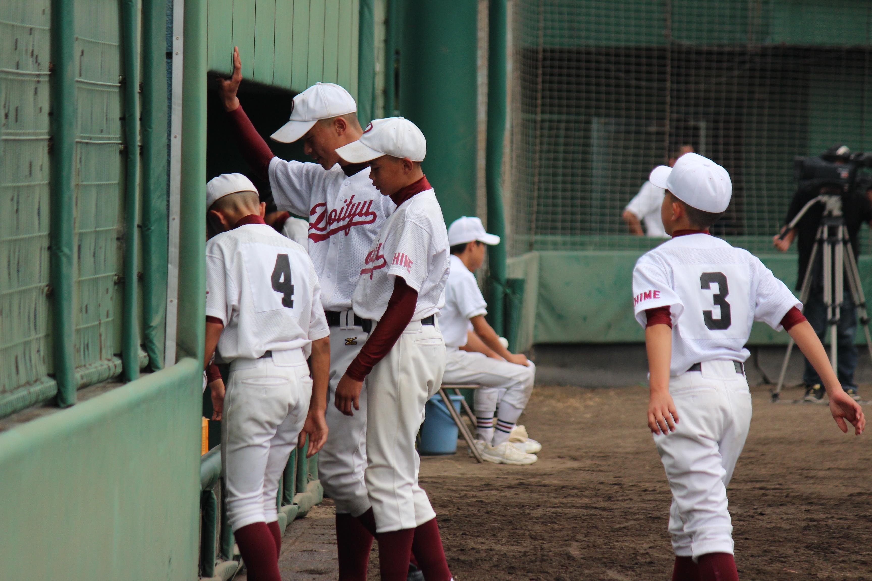 野球 (543)