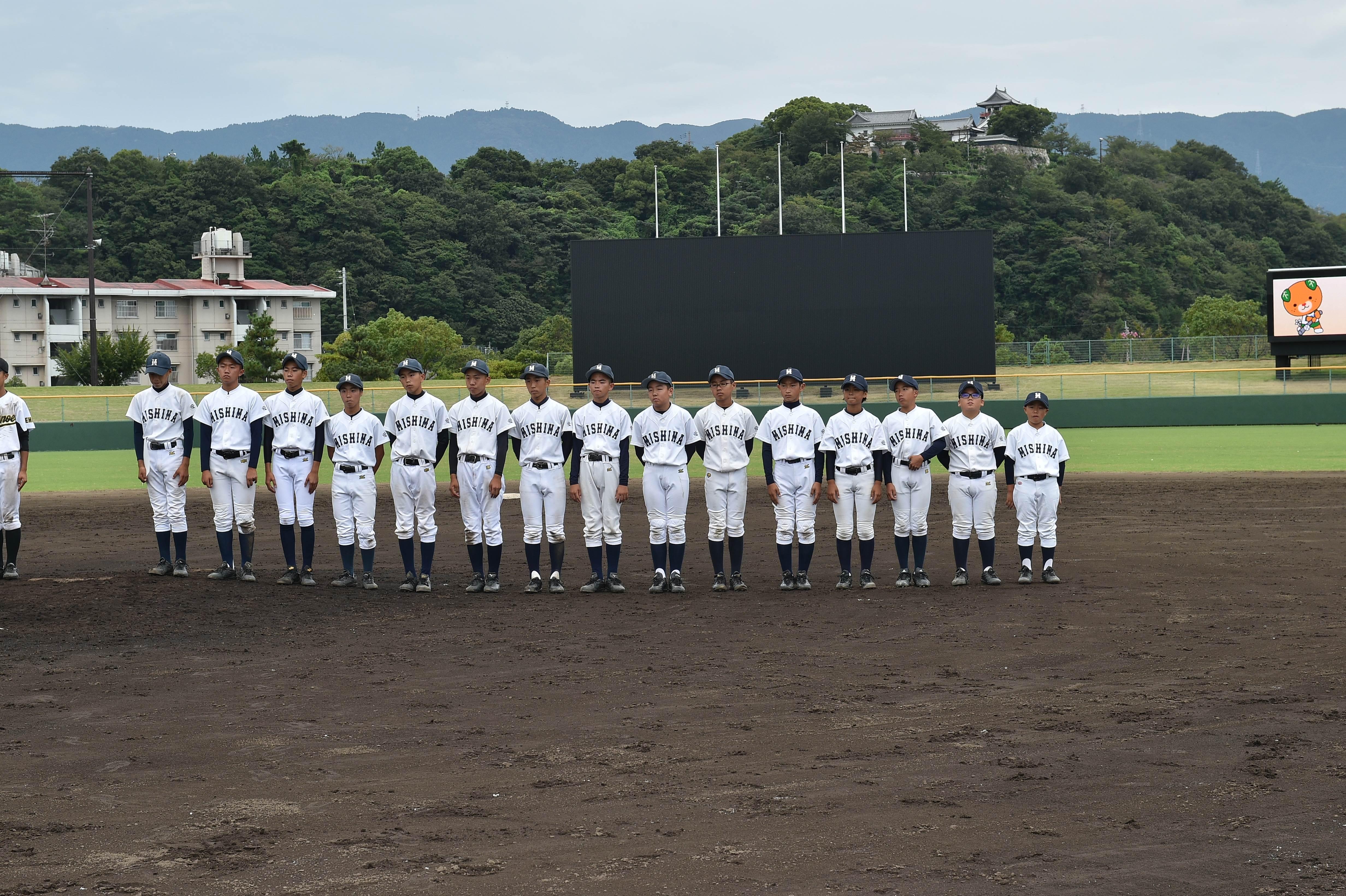 軟式野球 (491)