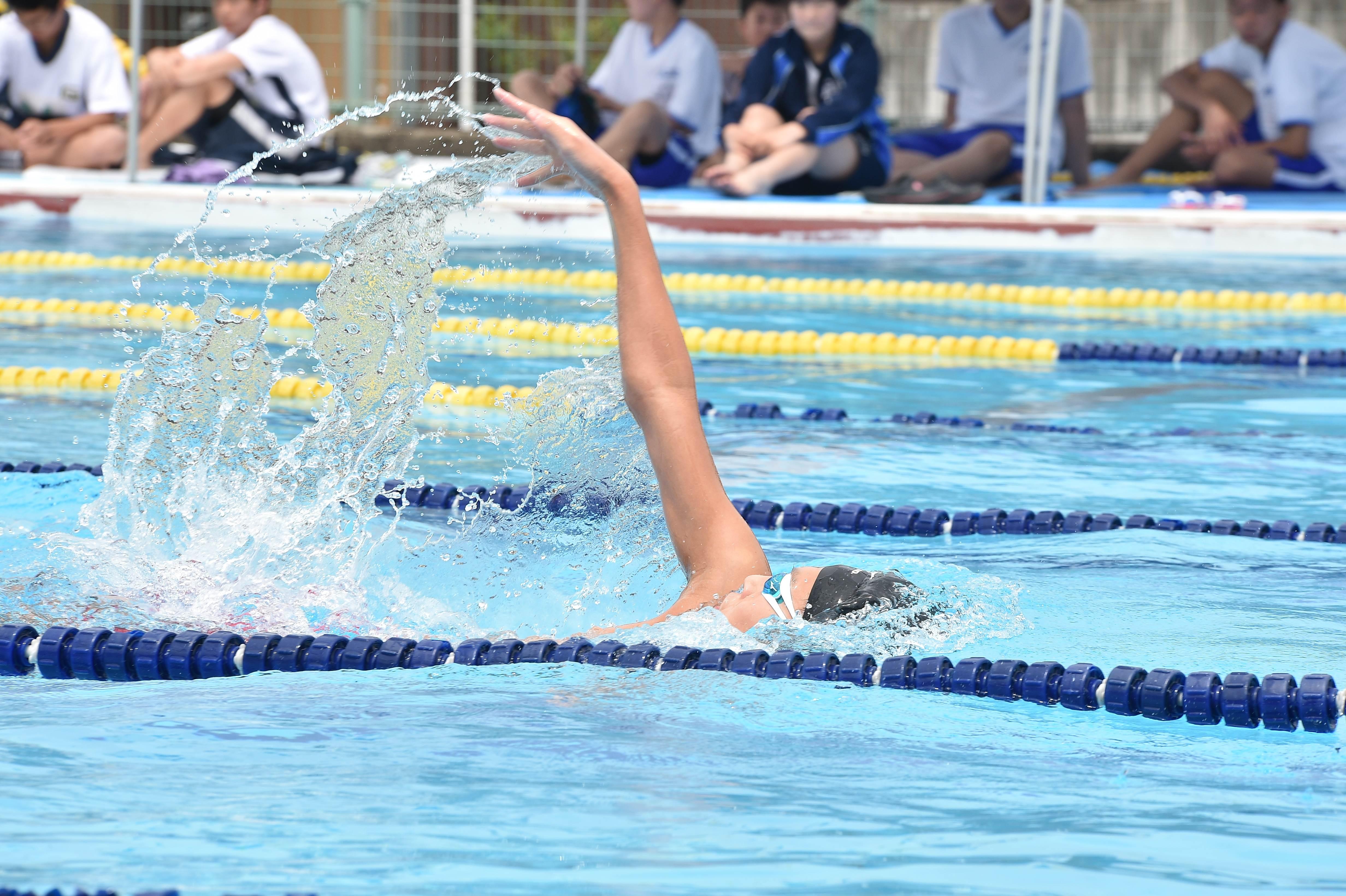 水泳 (42)