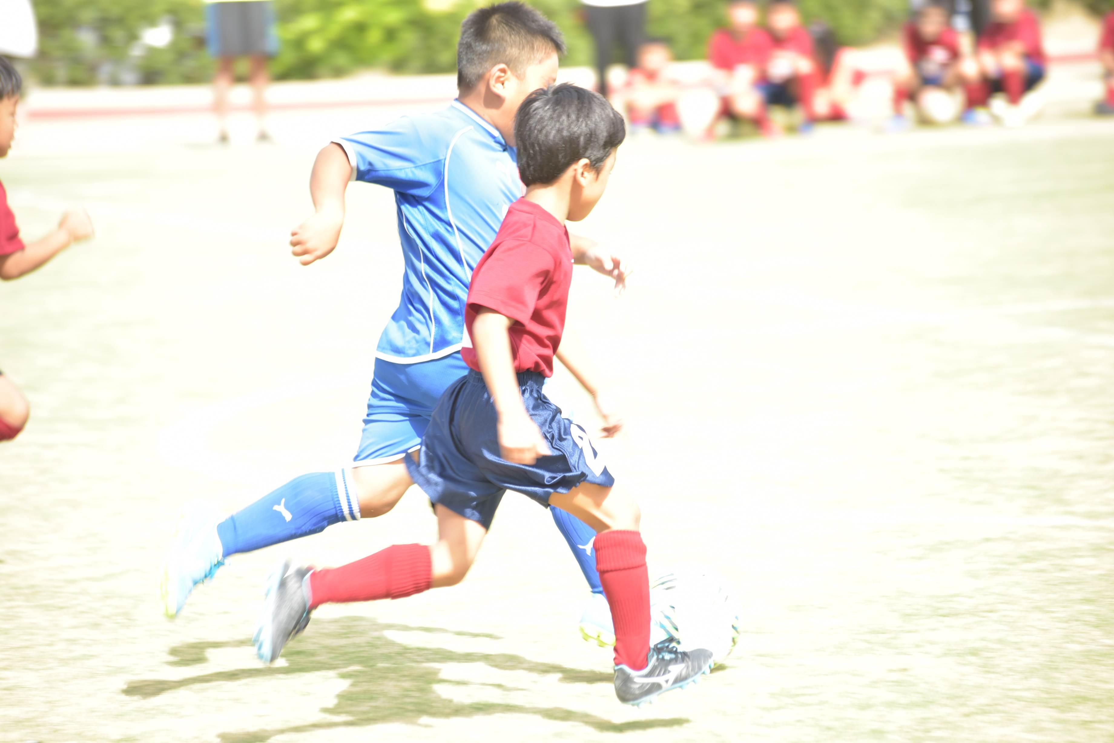 mini_soccer (544)