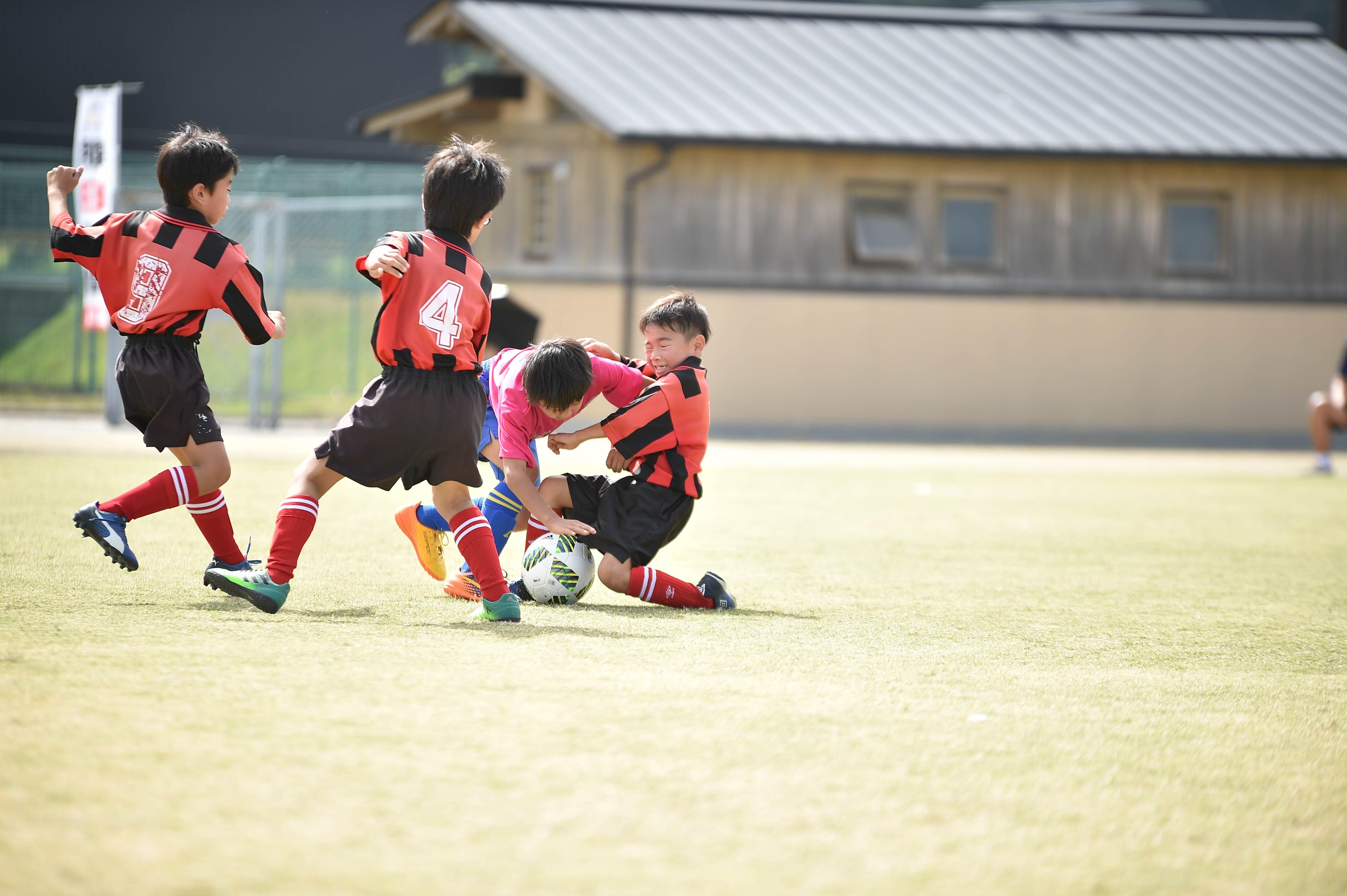 mini_soccer (200)